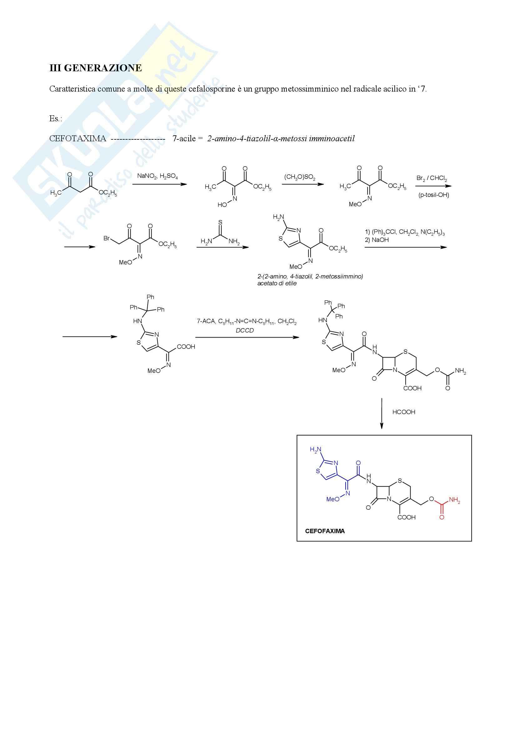 Chimica farmaceutica e tossicologica - cefalosporine Pag. 11