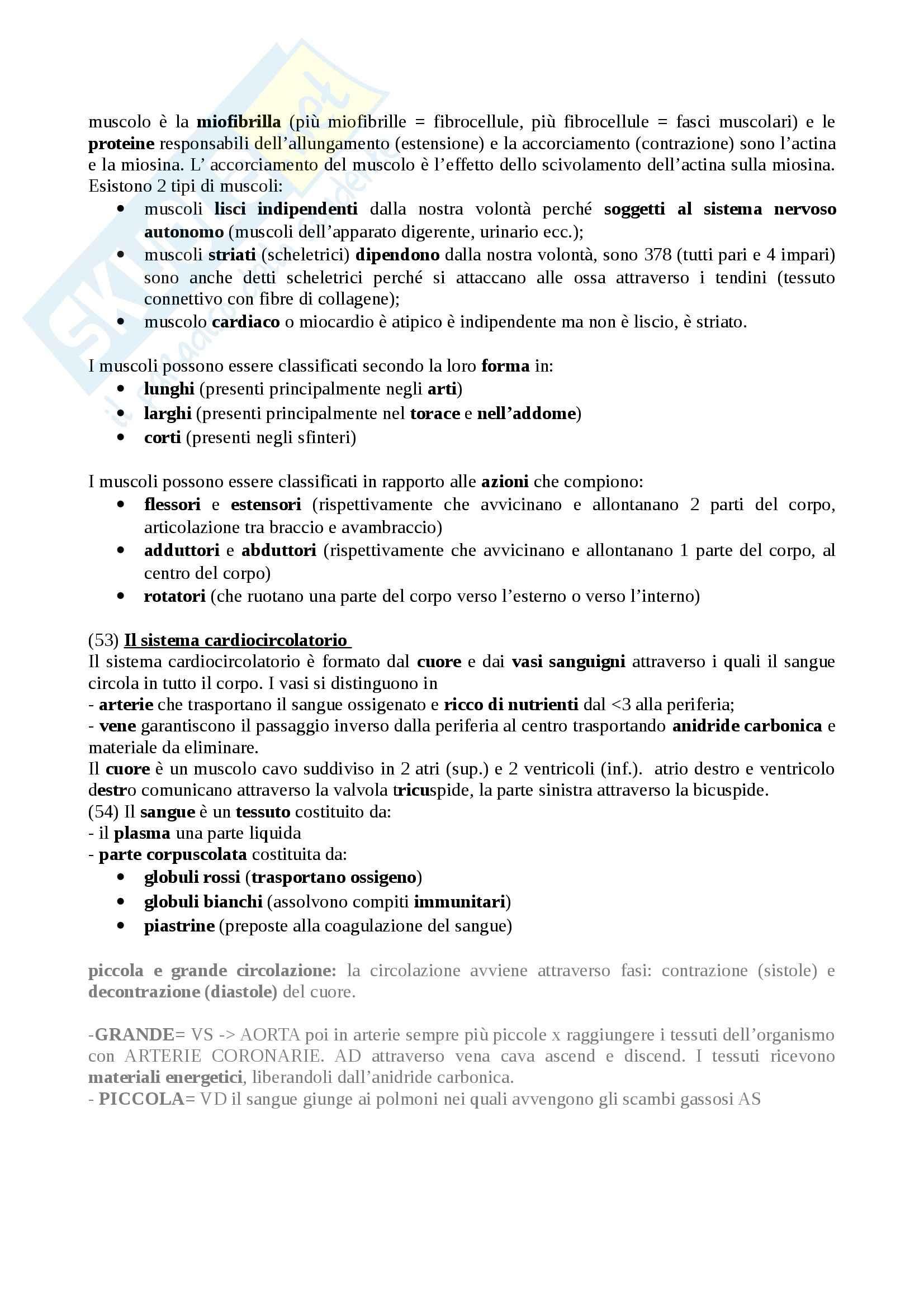 Riassunto esame Metodi e Attività Motorie e Sportive, prof. Carlomagno, libro consigliato Corpo e Movimento di Silibio Pag. 2