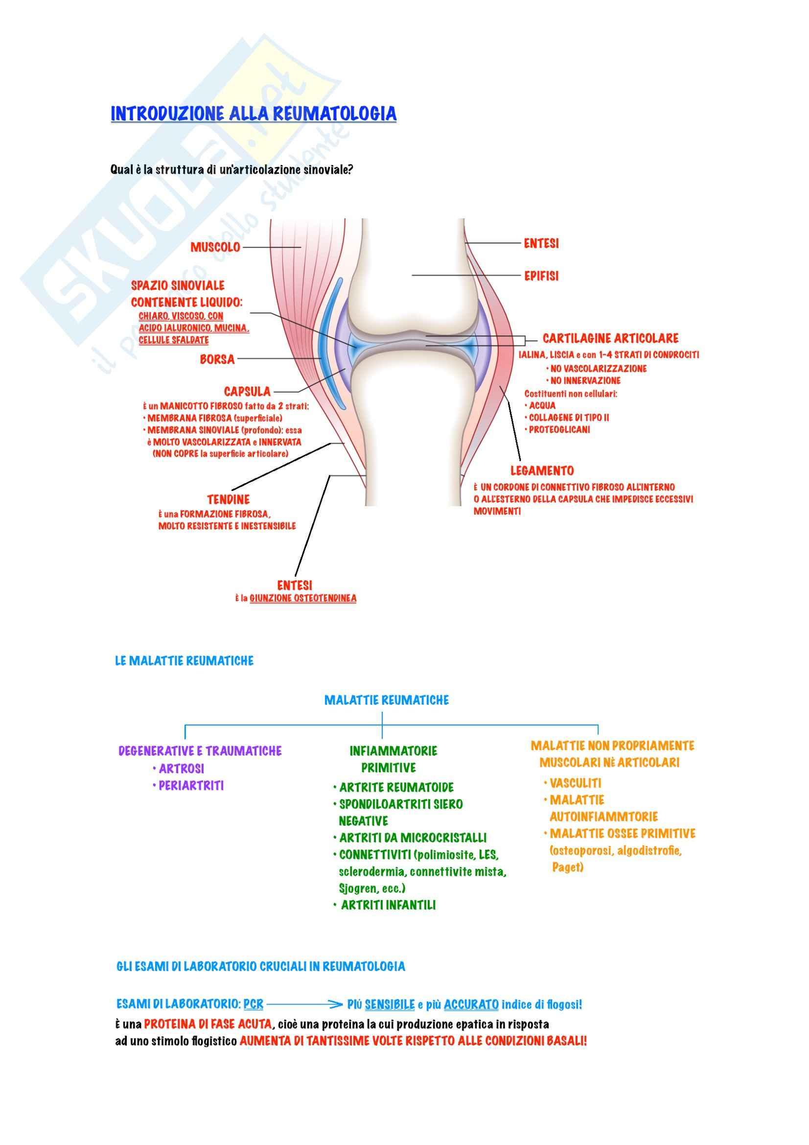Reumatologia - Introduzione, artrite reumatoide e lupus