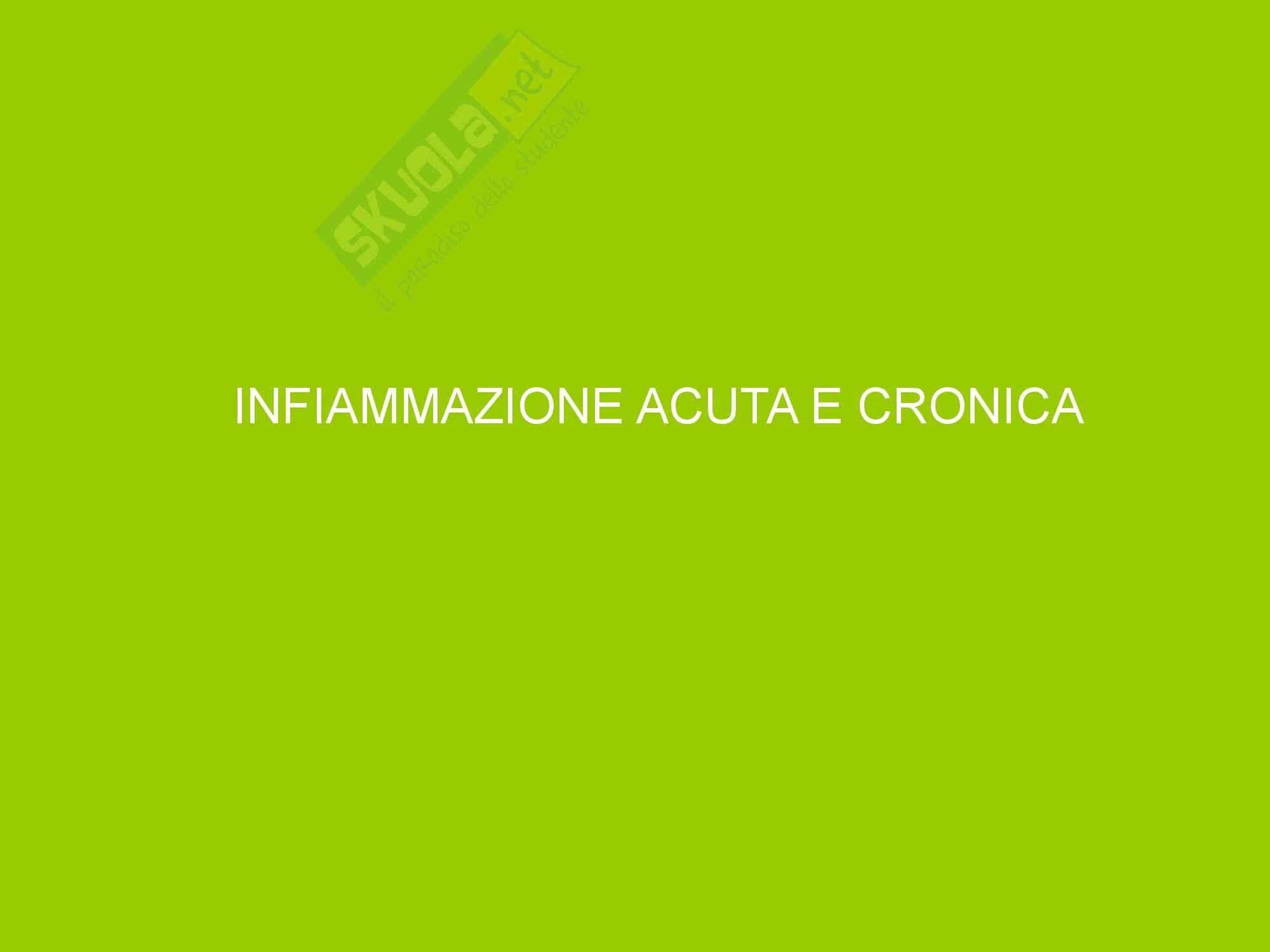 Infiammazione Acuta e Cronica