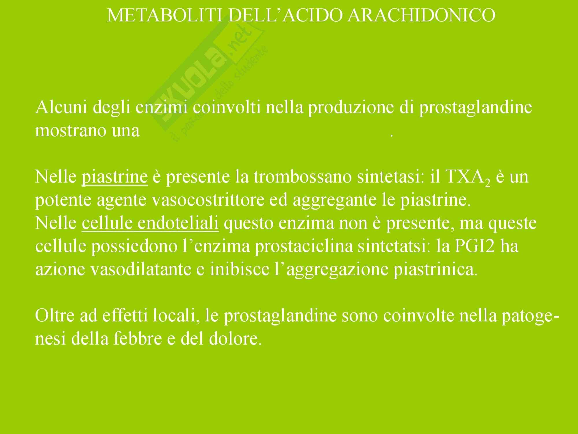 Infiammazione Acuta e Cronica Pag. 71