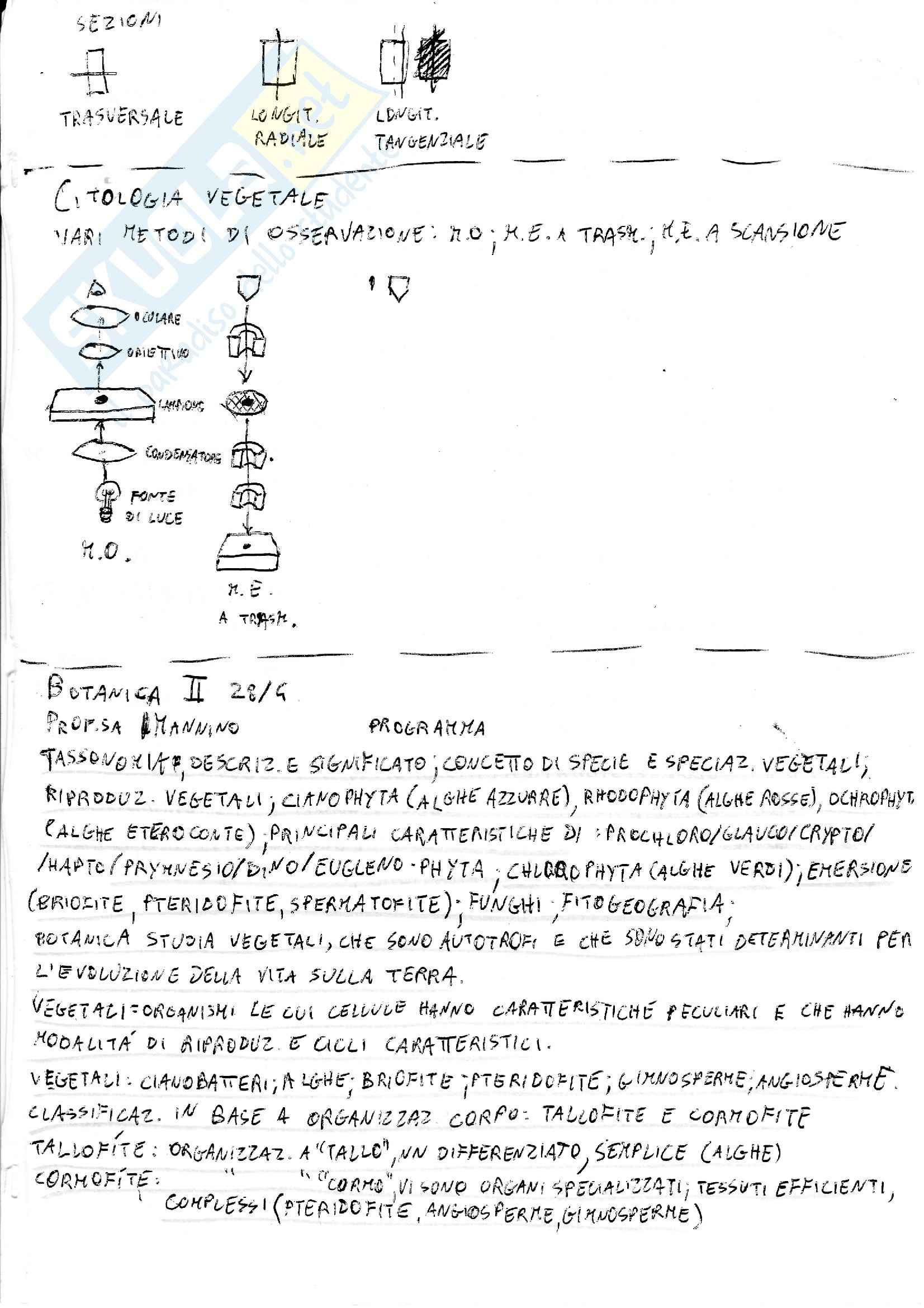 Lezioni, Botanica Sistematica