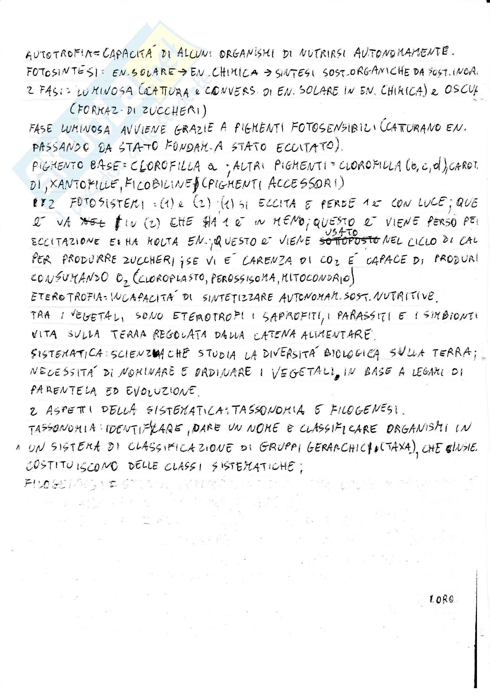 Lezioni, Botanica Sistematica Pag. 2