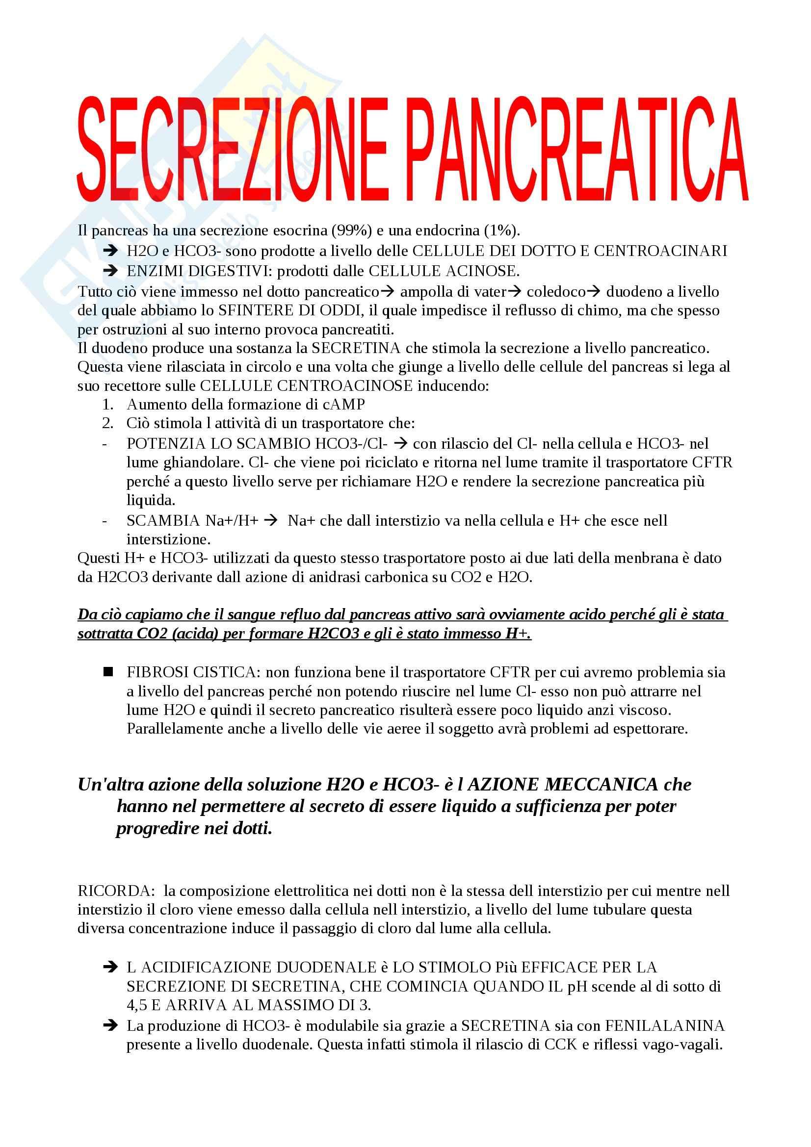 Fisiologia del sistema gastroenterico, Fisiologia Pag. 21