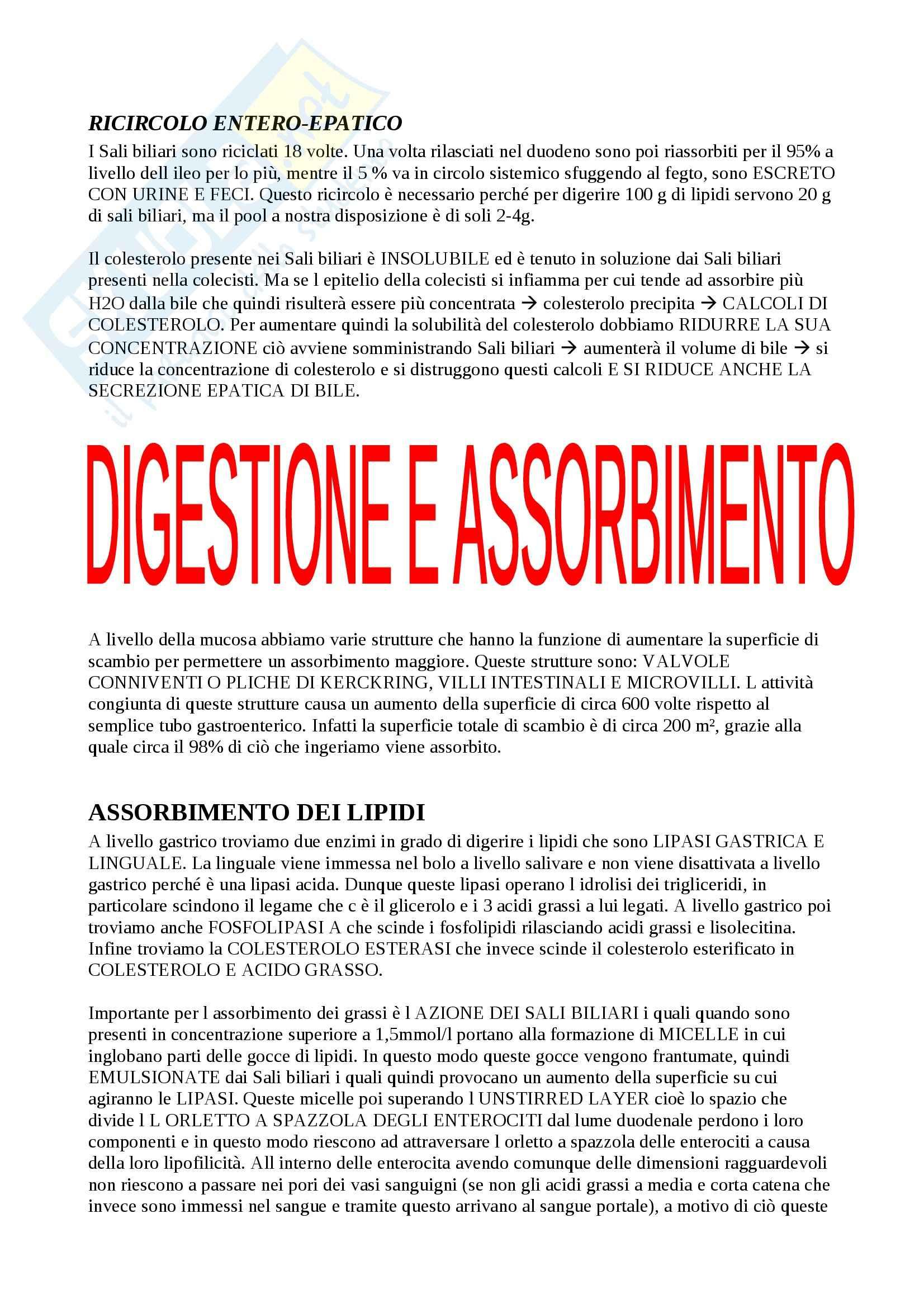 Fisiologia del sistema gastroenterico, Fisiologia Pag. 26