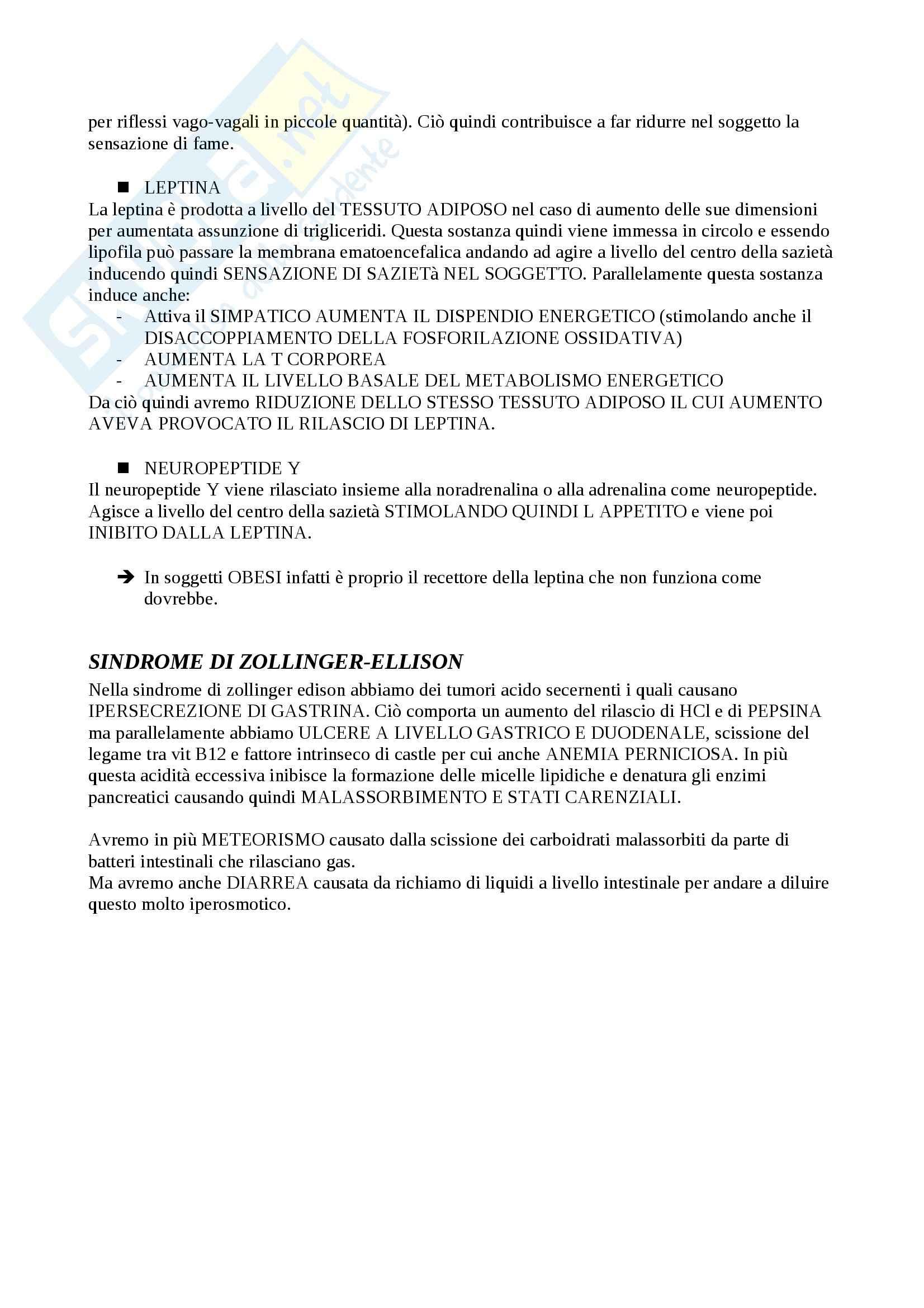 Fisiologia del sistema gastroenterico, Fisiologia Pag. 31