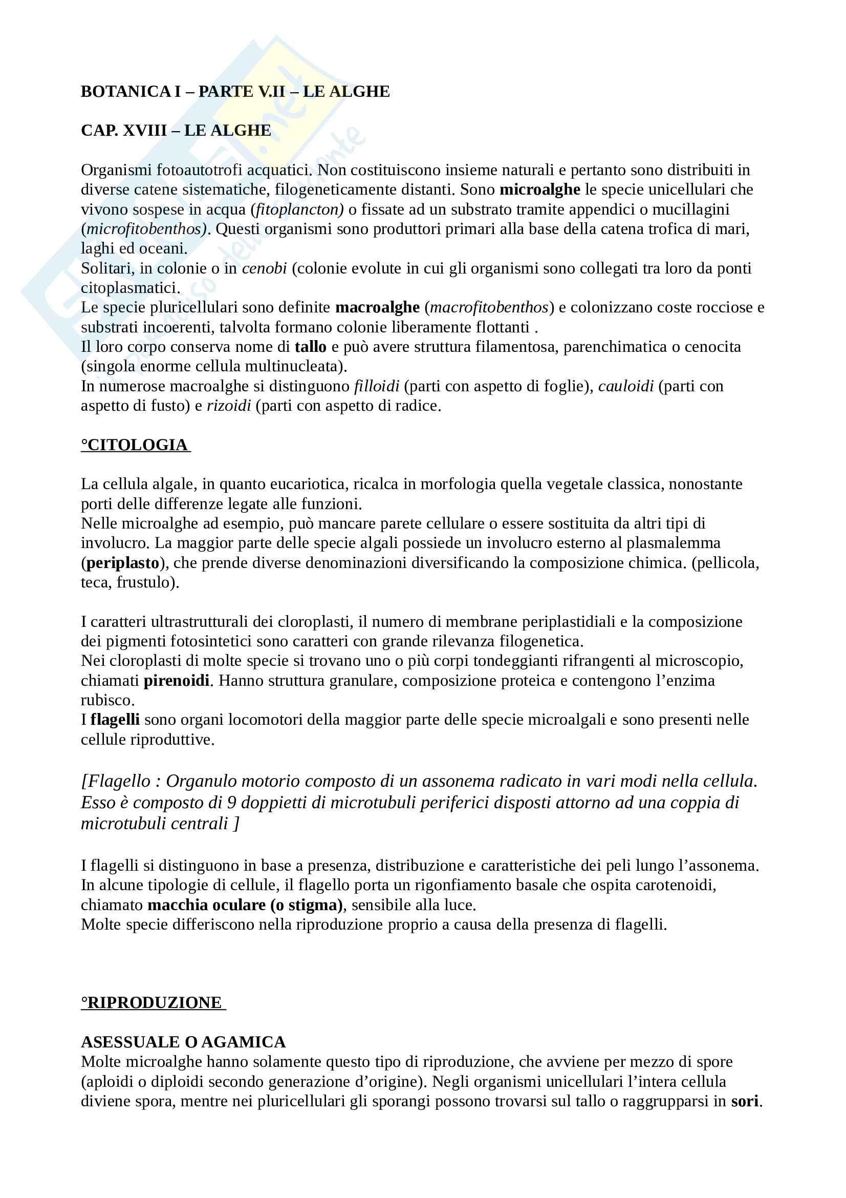 Botanica Generale - Parte VII - Le Alghe