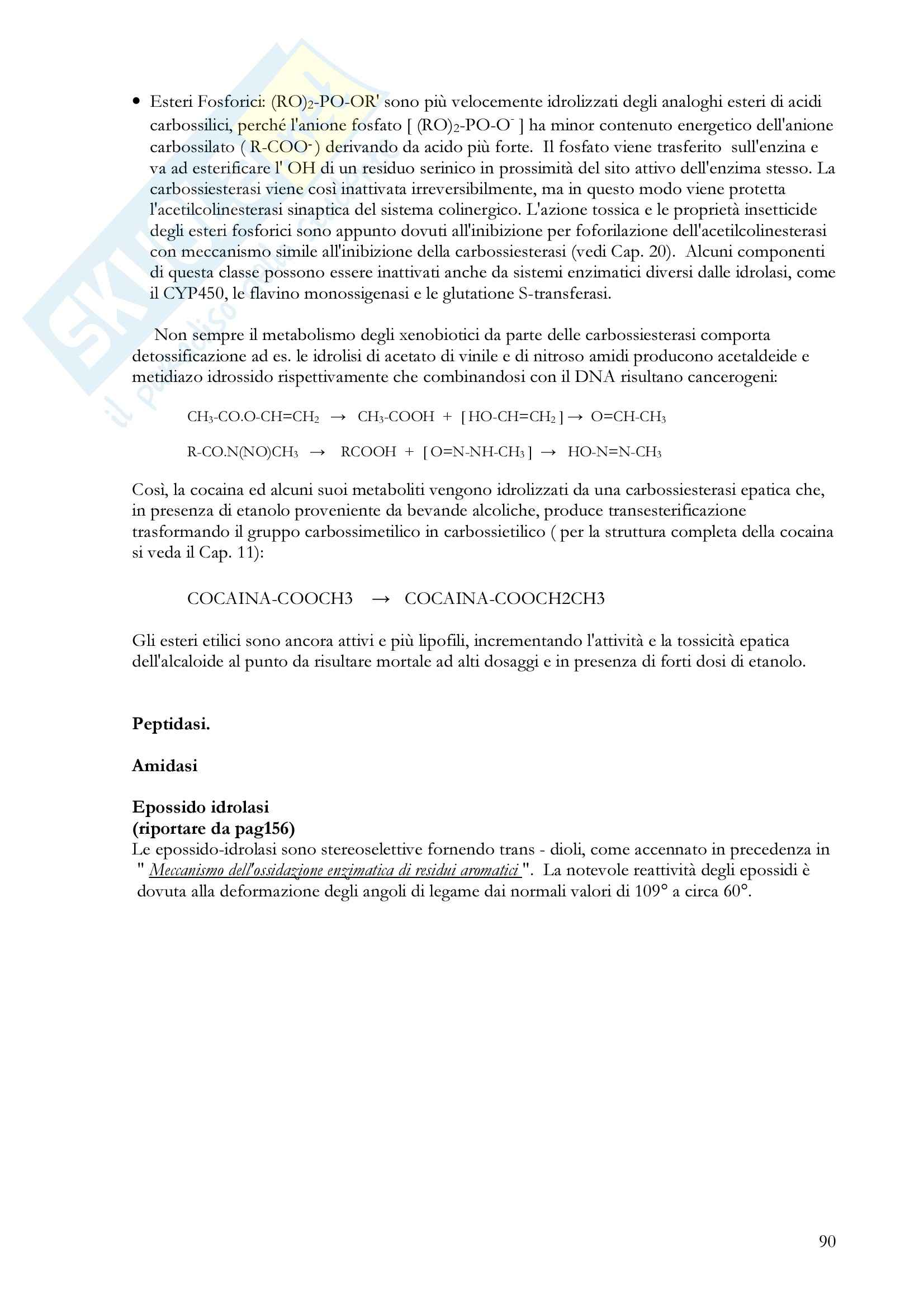 Farmacologia generale - metabolismo epatico dei farmaci Pag. 16