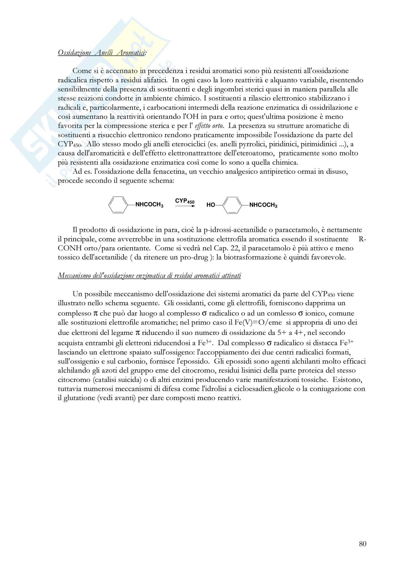 Farmacologia generale - metabolismo epatico dei farmaci Pag. 6