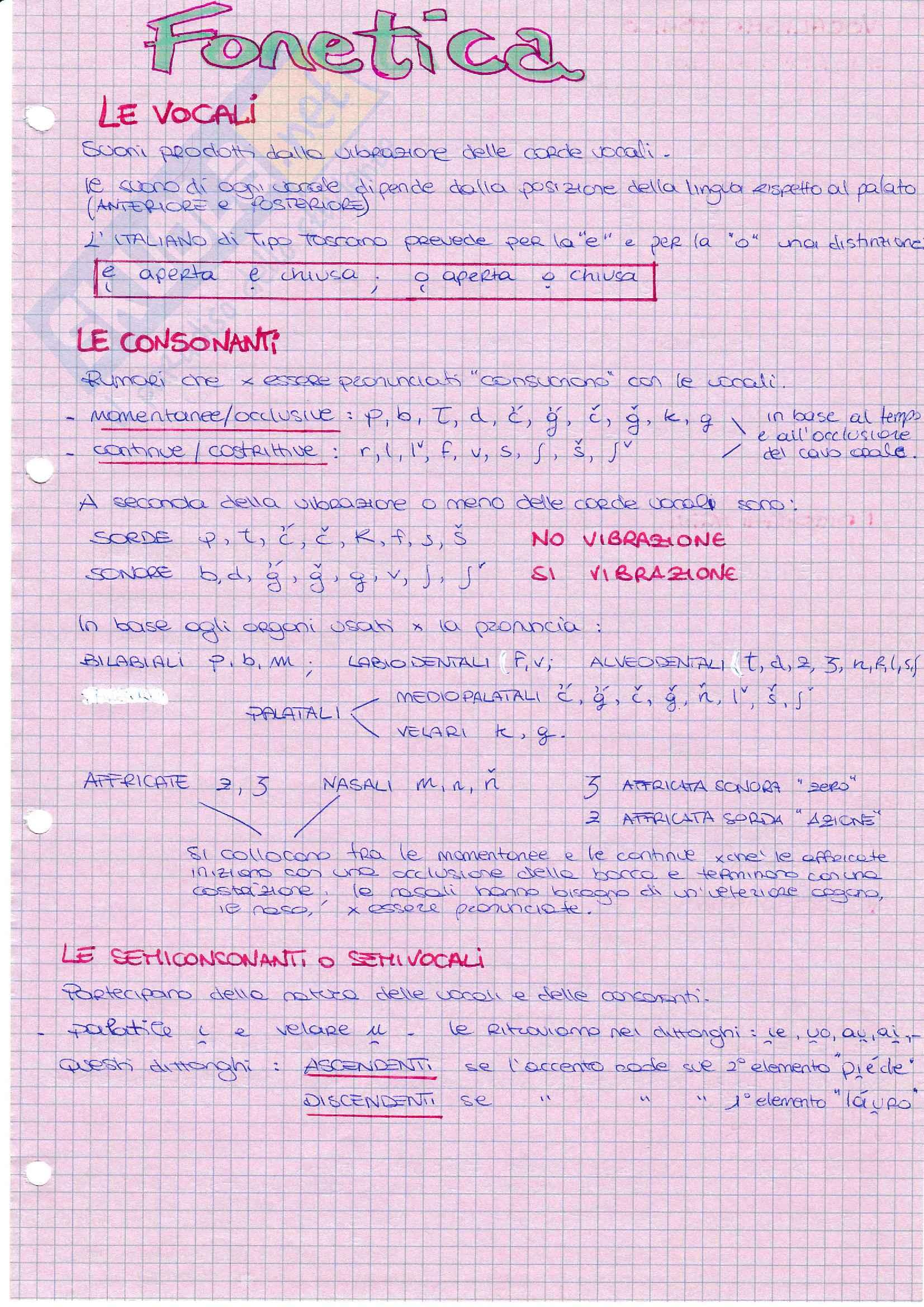 Fonetica linguistica
