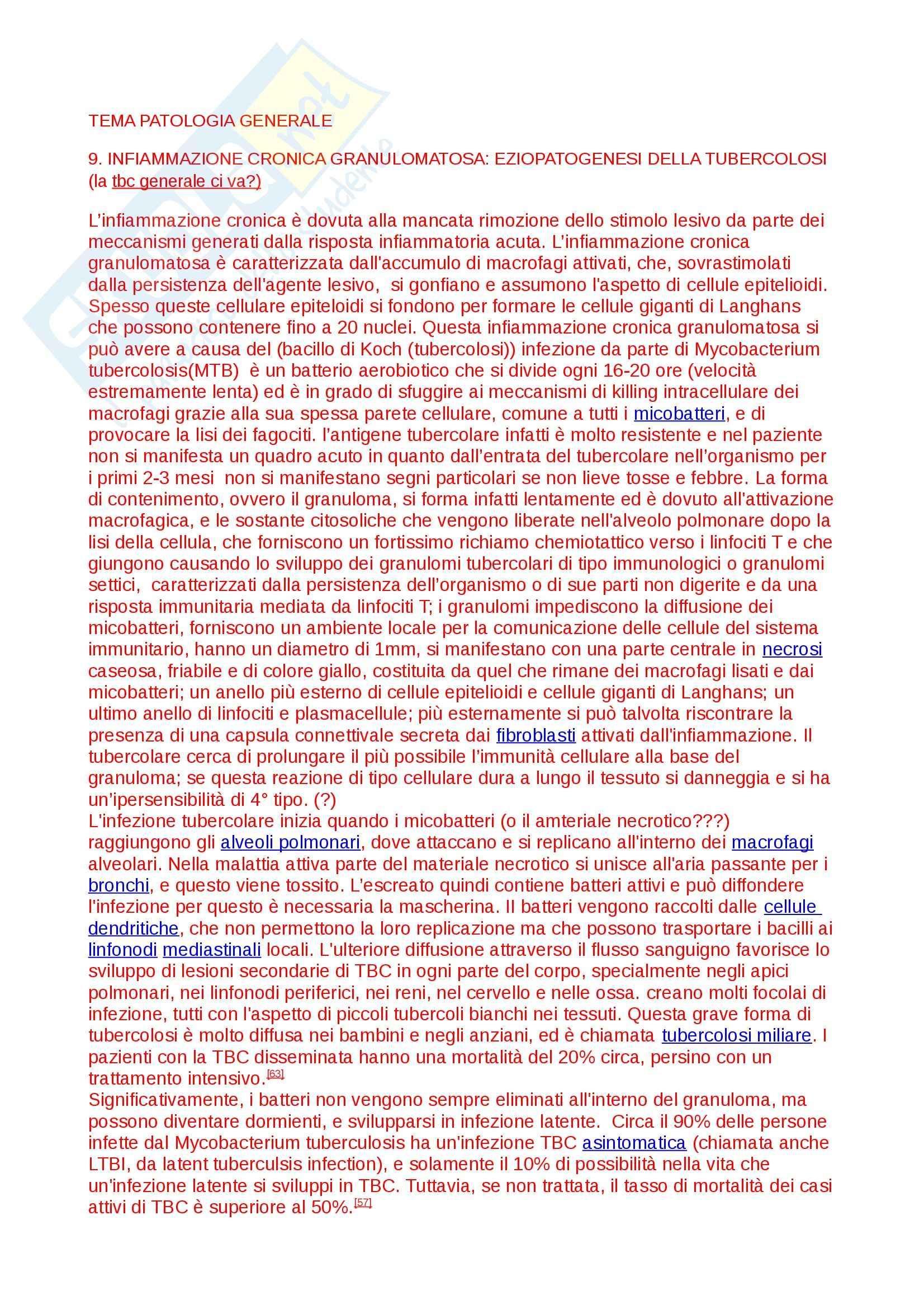 Tubercolosi, Fisiopatologia
