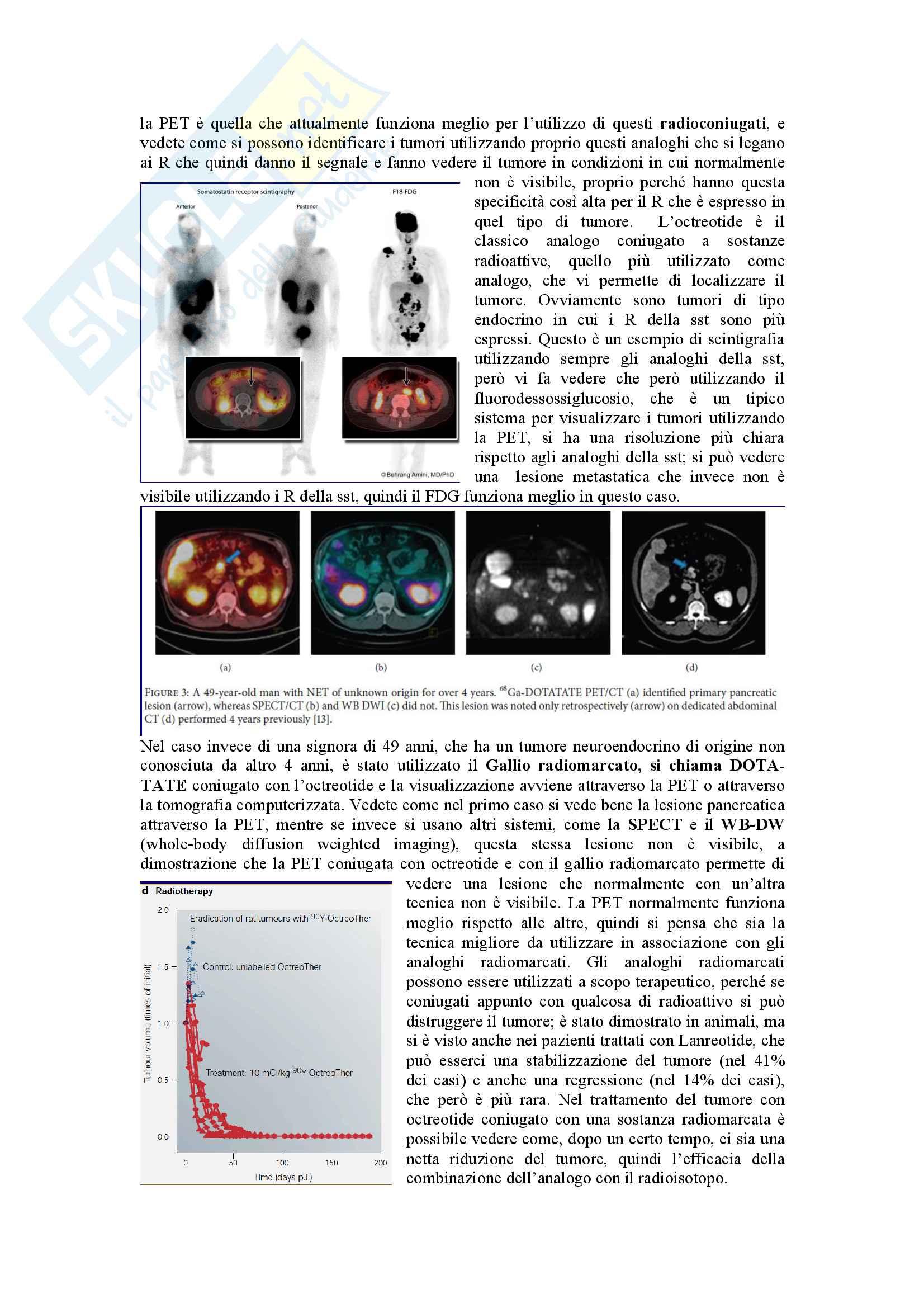 Endocrinologia Granata parte 2 Pag. 11