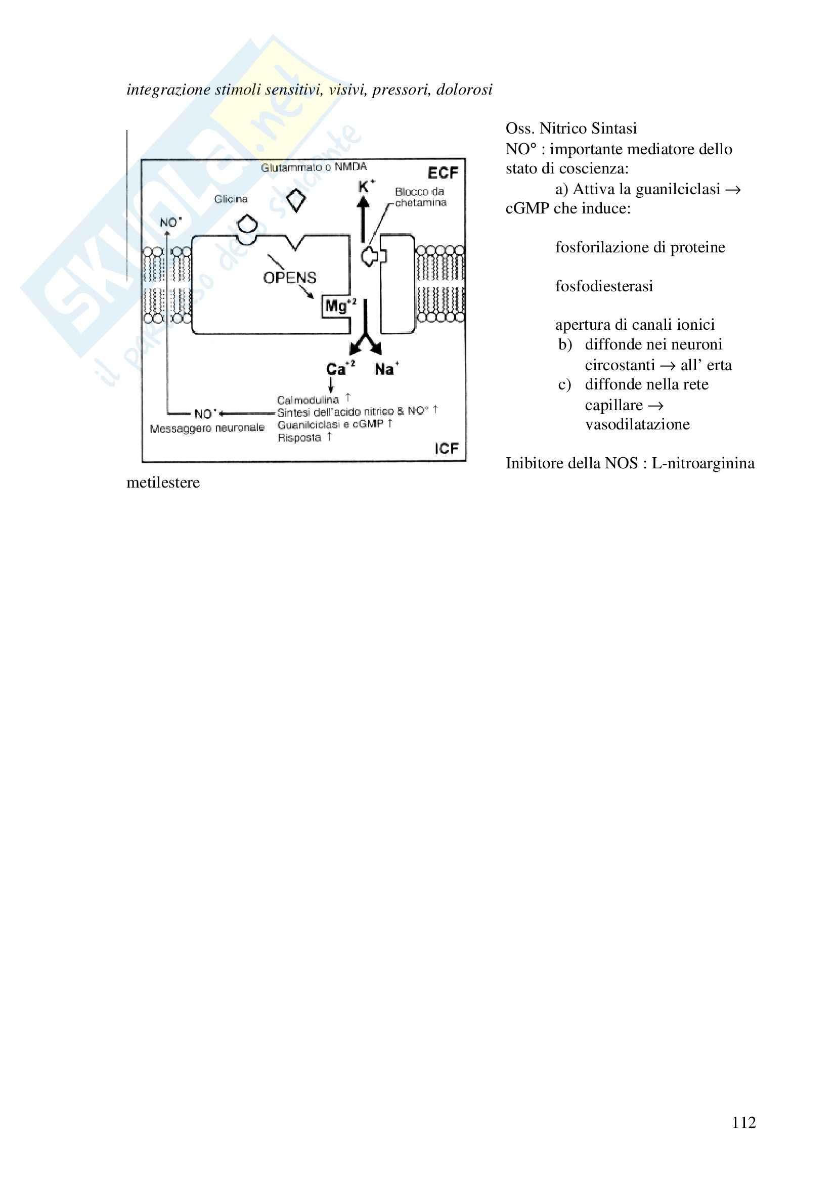 Chimica farmaceutica - anestetici generali Pag. 11