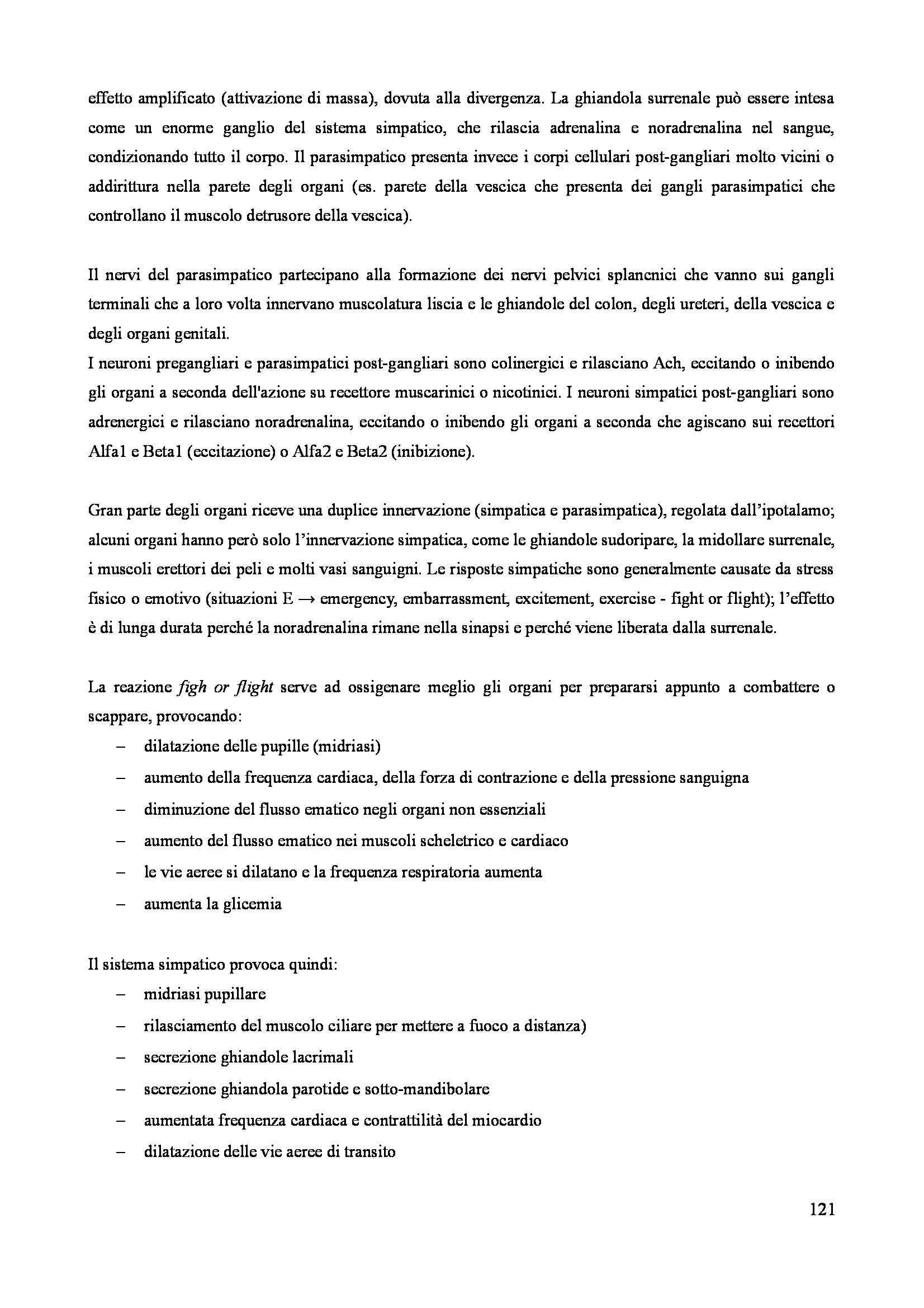 Neuroanatomia - Appunti Pag. 121