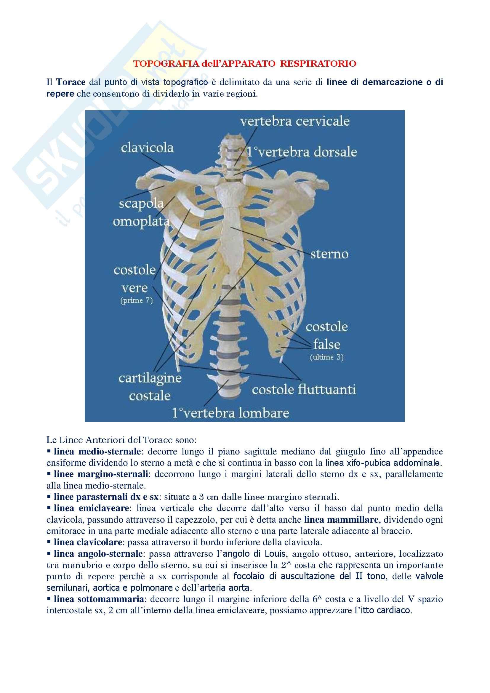 La prof di anatomia - 2 3