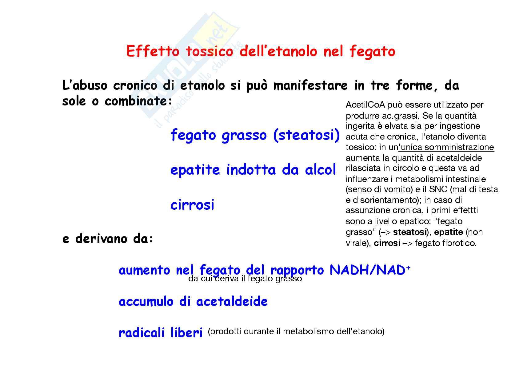 29 Metabolismo dell eme e metabolismo dell etanolo Pag. 21