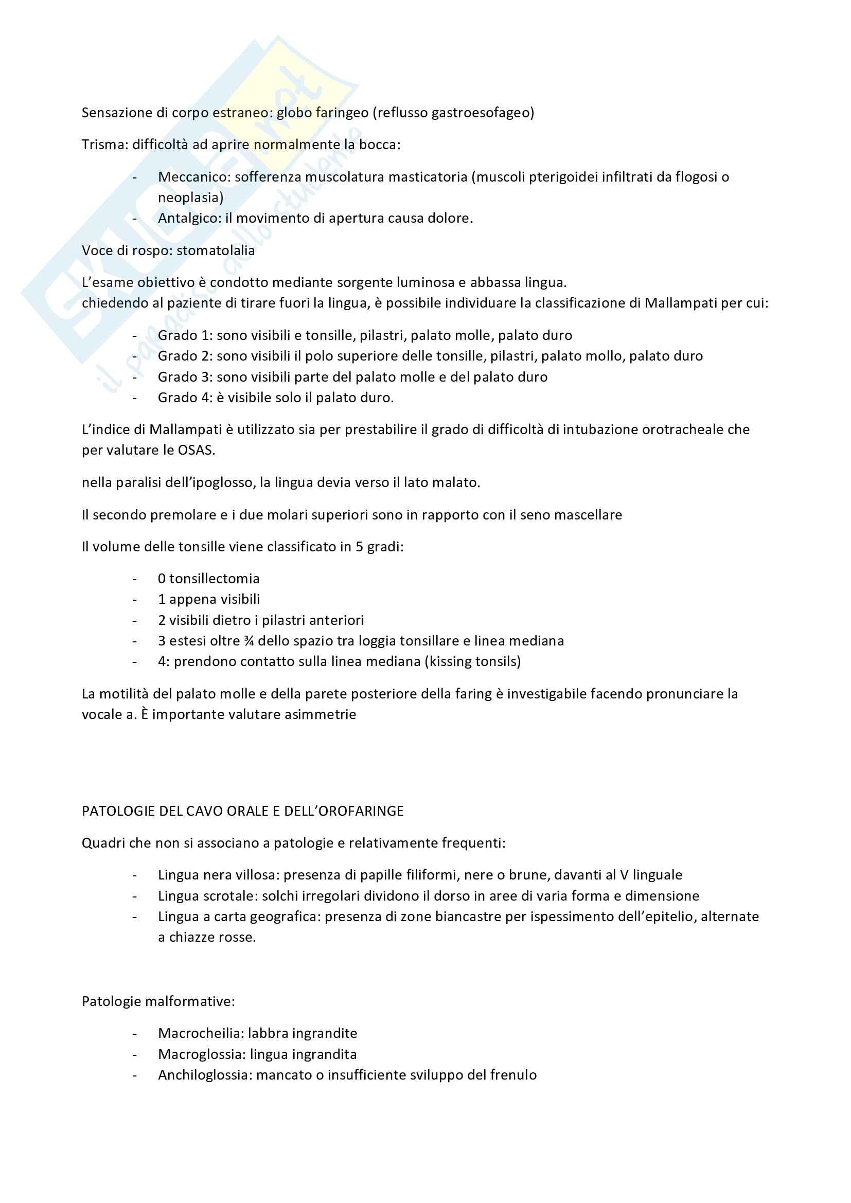 Patologie del cavo orale e dell'orofaringe Pag. 2