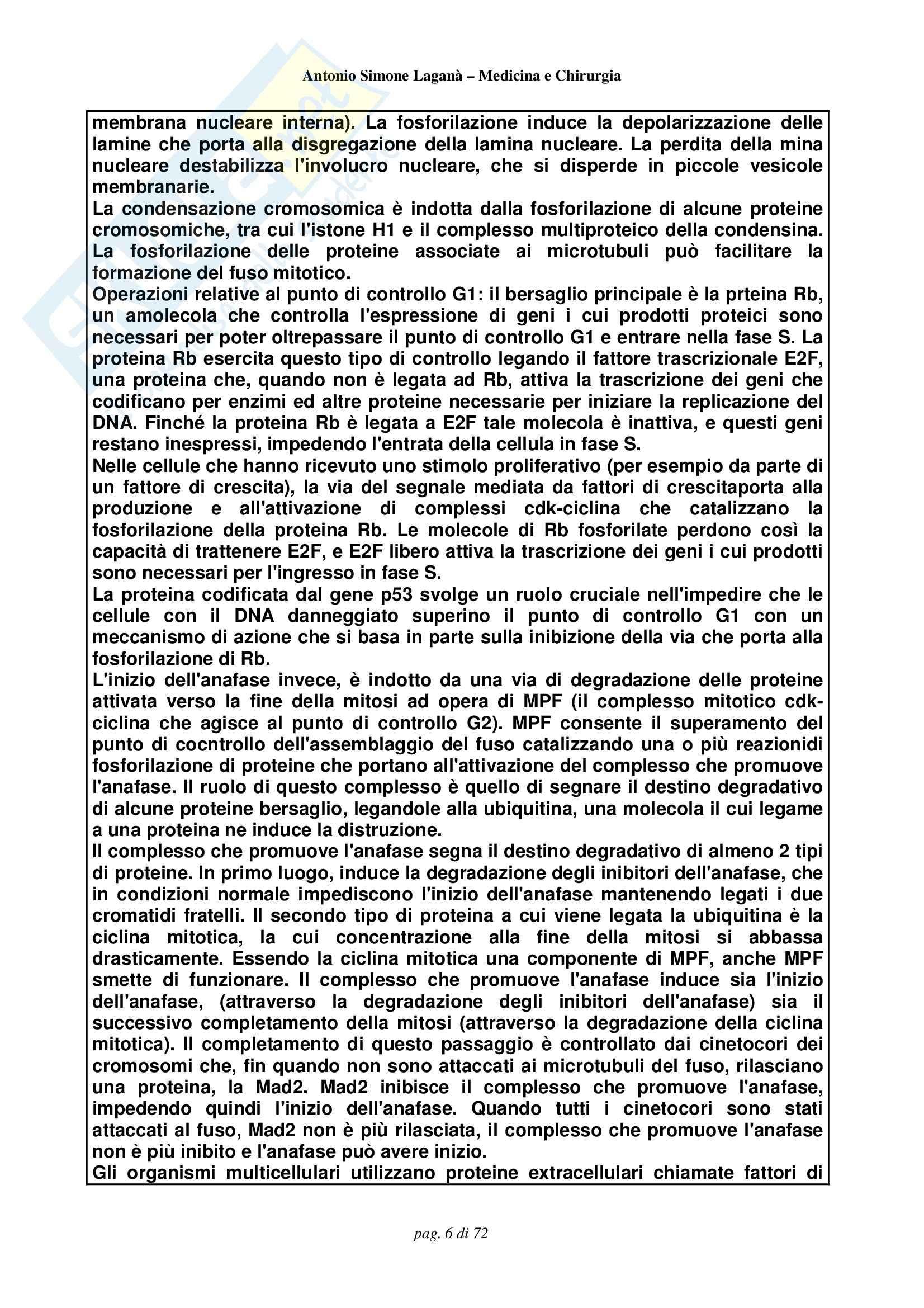 Biologia e Genetica - Compendio Pag. 6