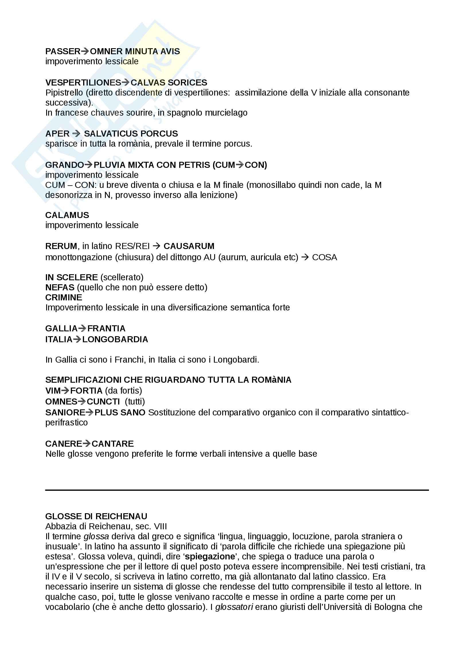 Glosse di Reichenau - contesto storico e analisi linguistica Pag. 2