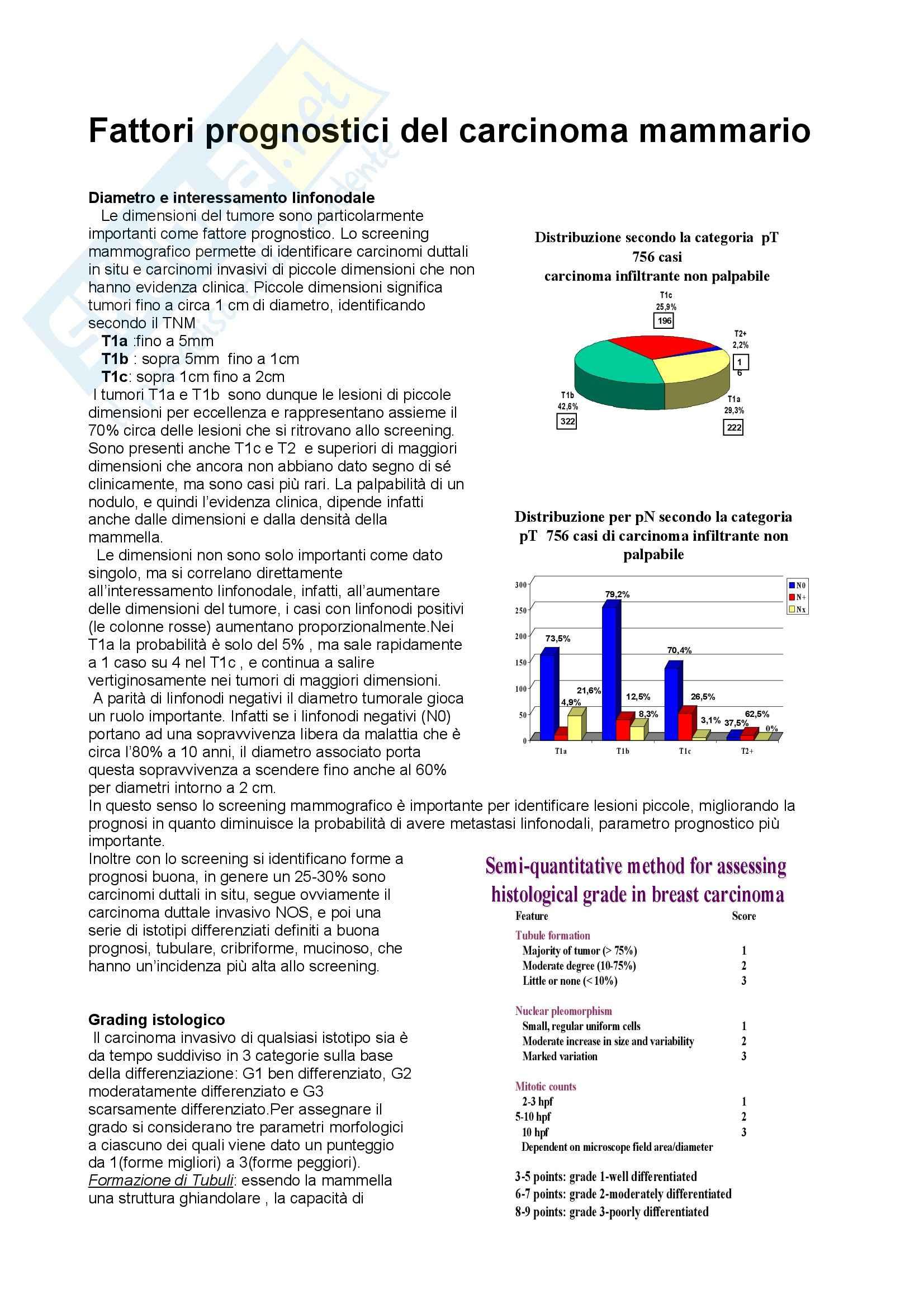 Anatomia Patologica - Patologia mammaria Pag. 11