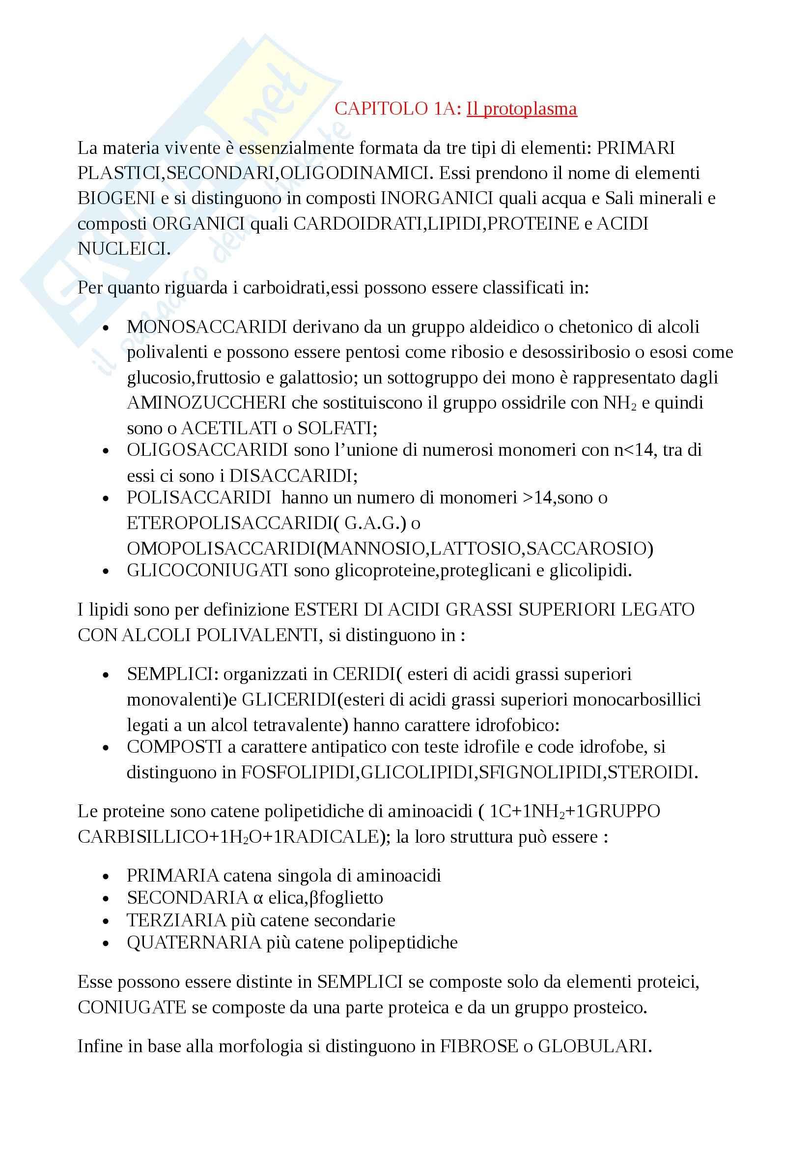 Citologia - cap. 1/A sul protoplasma