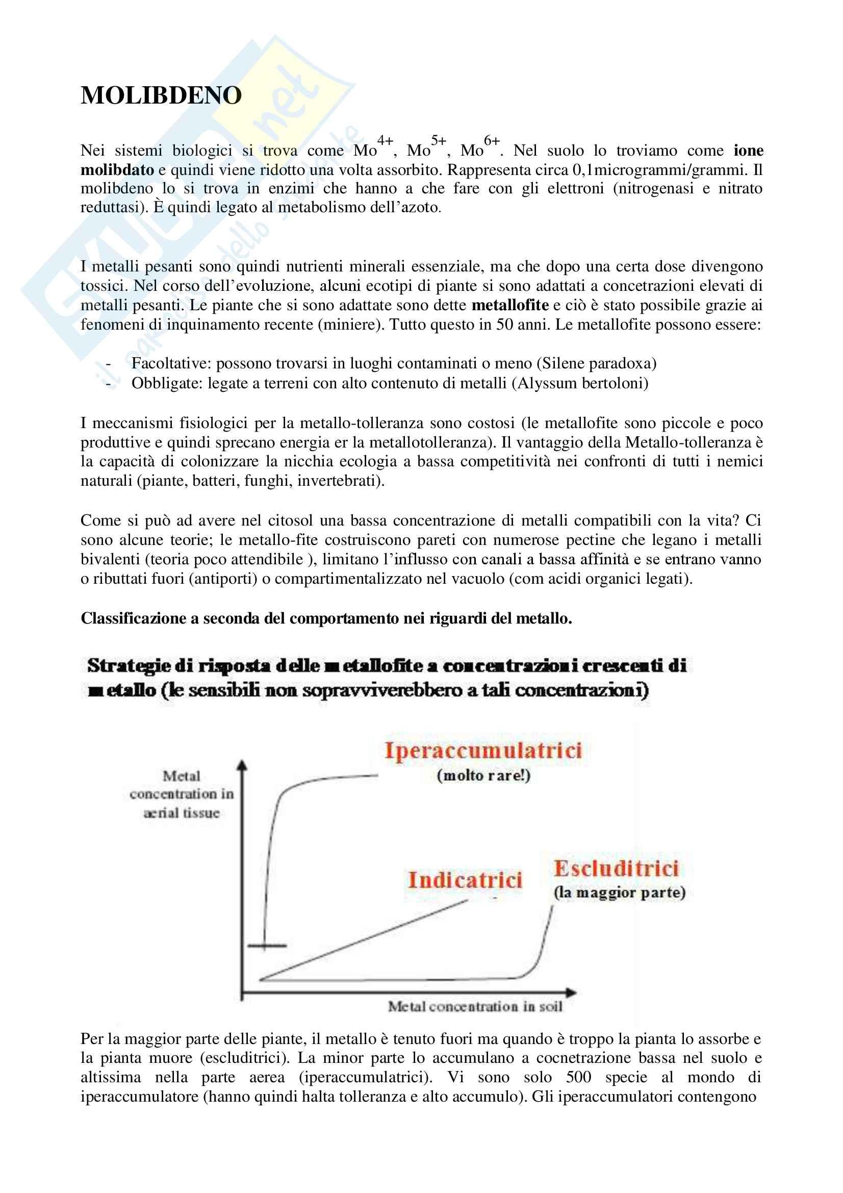 Fisiologia Vegetale Pag. 76