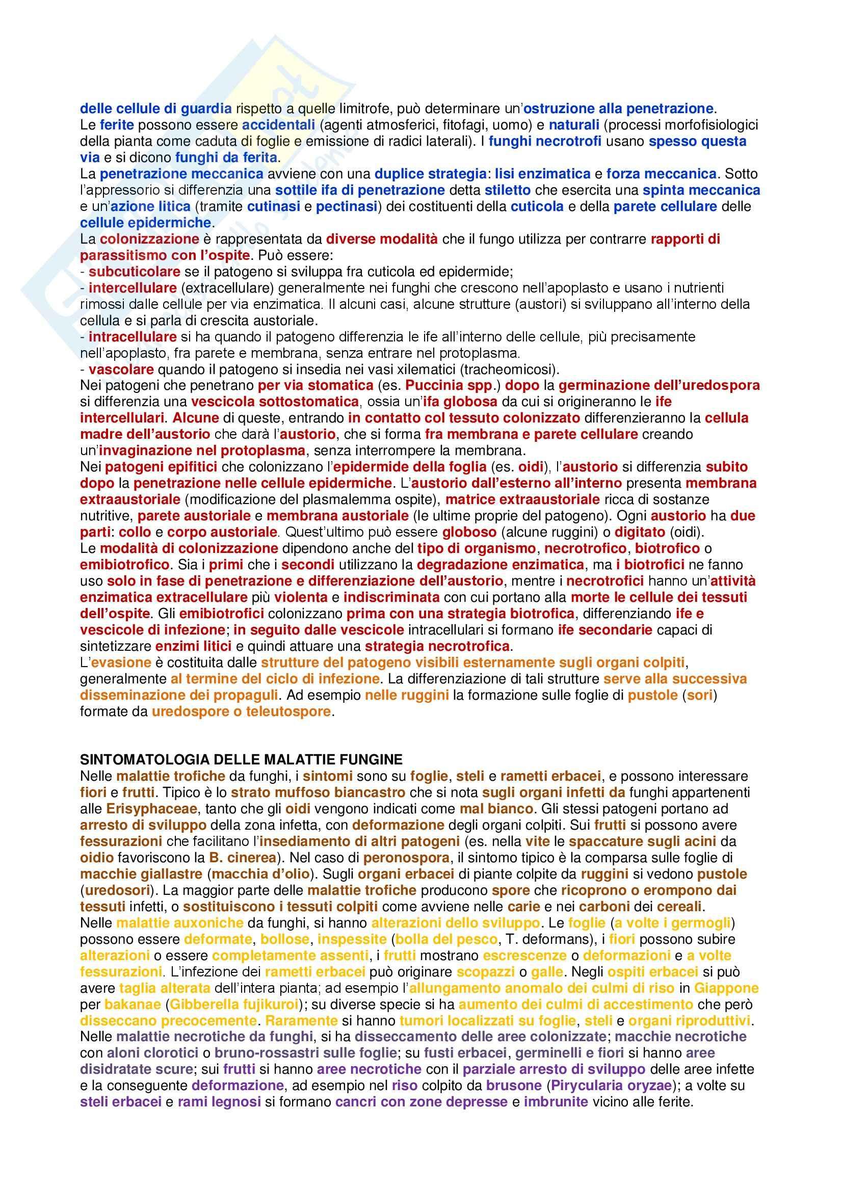 Riassunto esame Patologia Vegetale Generale, prof. Pollastro Pag. 16