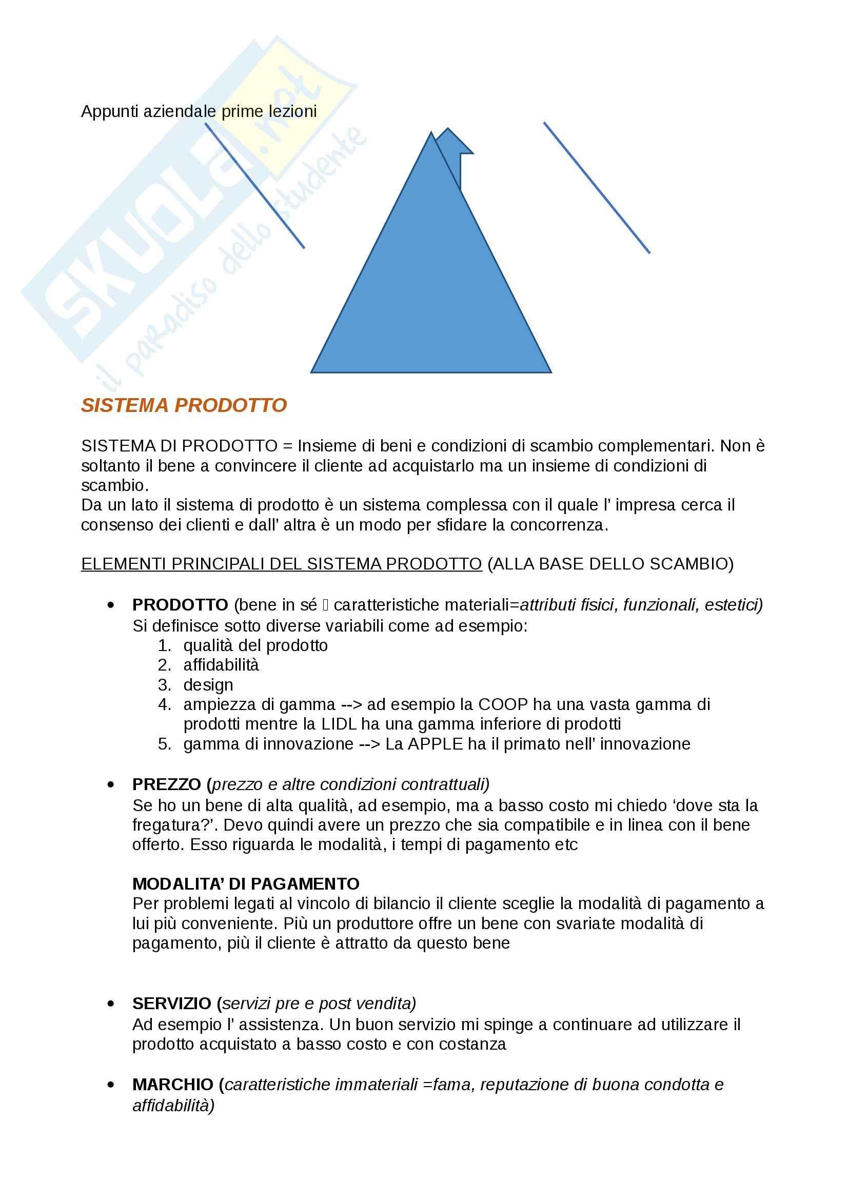 Sistema prodotto e formula competitiva, Economia aziendale