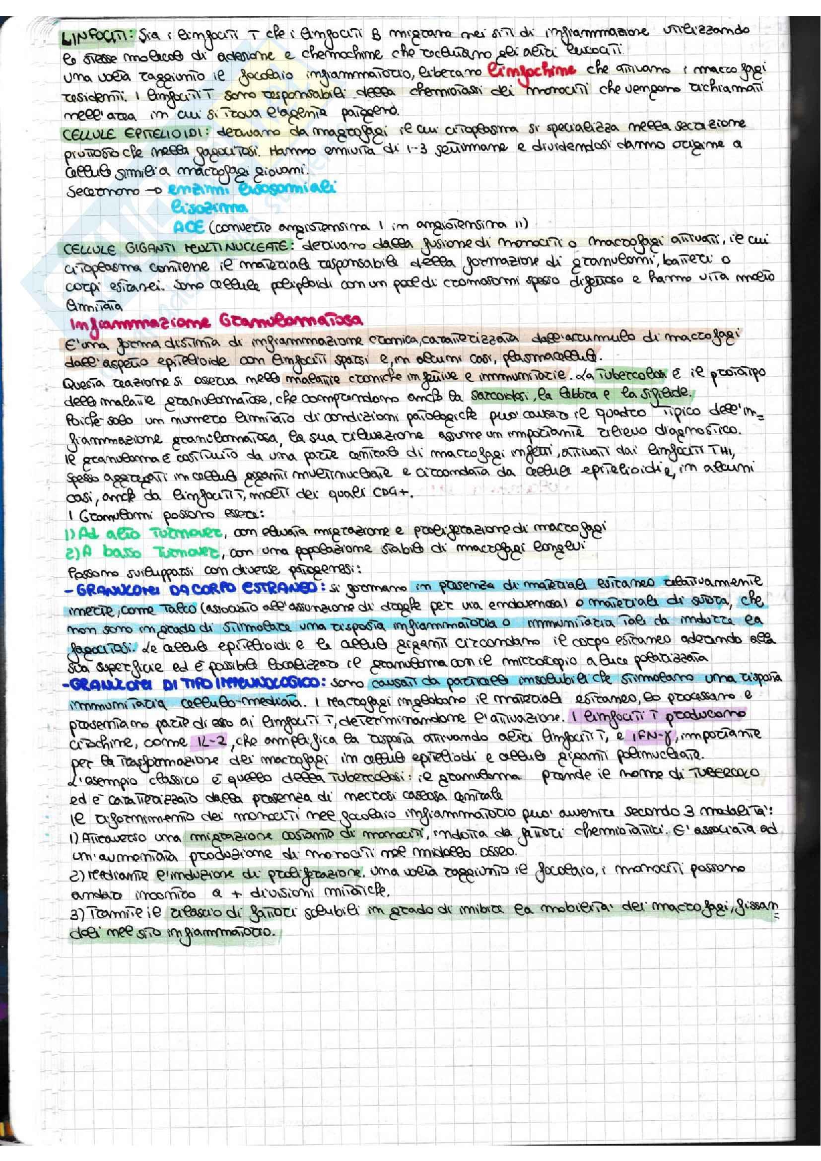 Infiammazione acuta e cronica + schemi riassuntivi Pag. 11