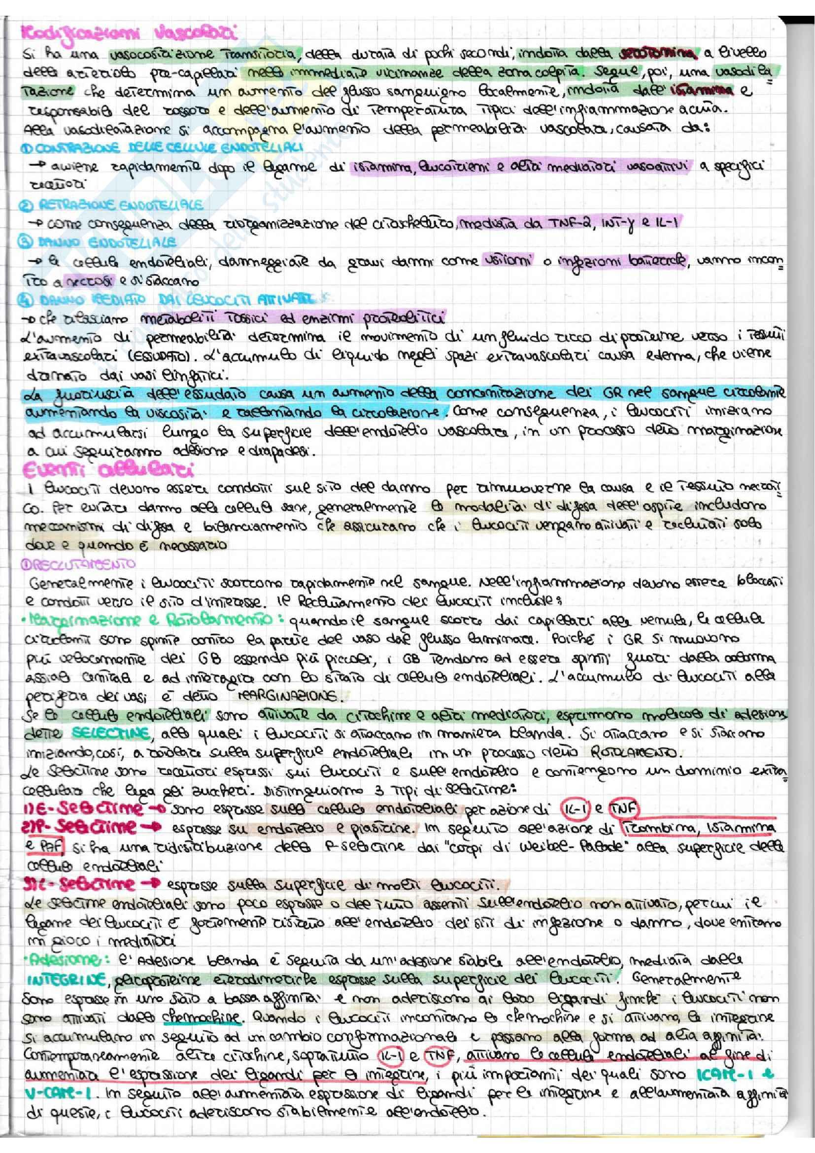 Infiammazione acuta e cronica + schemi riassuntivi Pag. 2