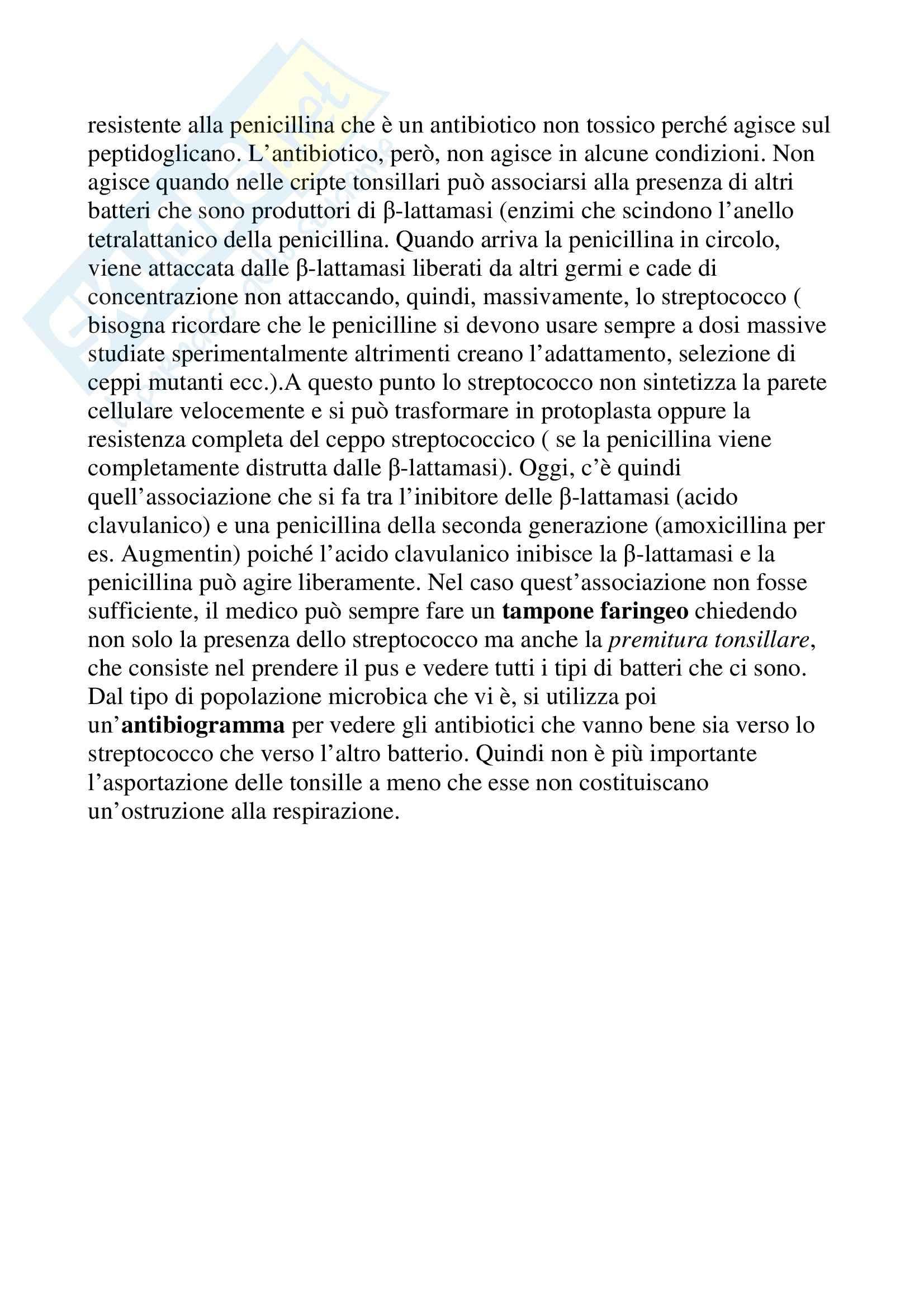 Microbiologia - streptococchi Pag. 11