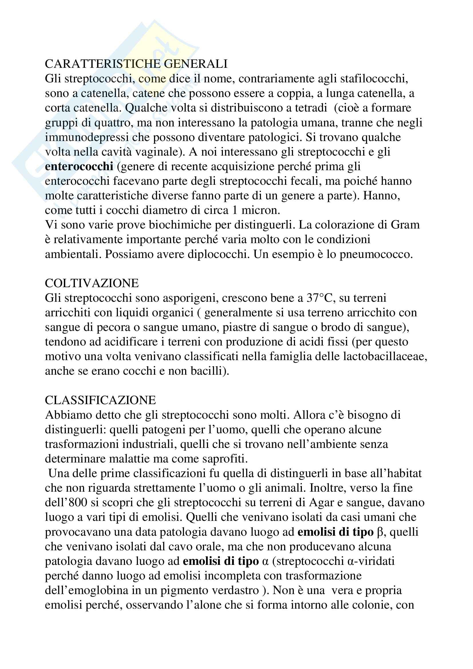 Microbiologia - streptococchi Pag. 2