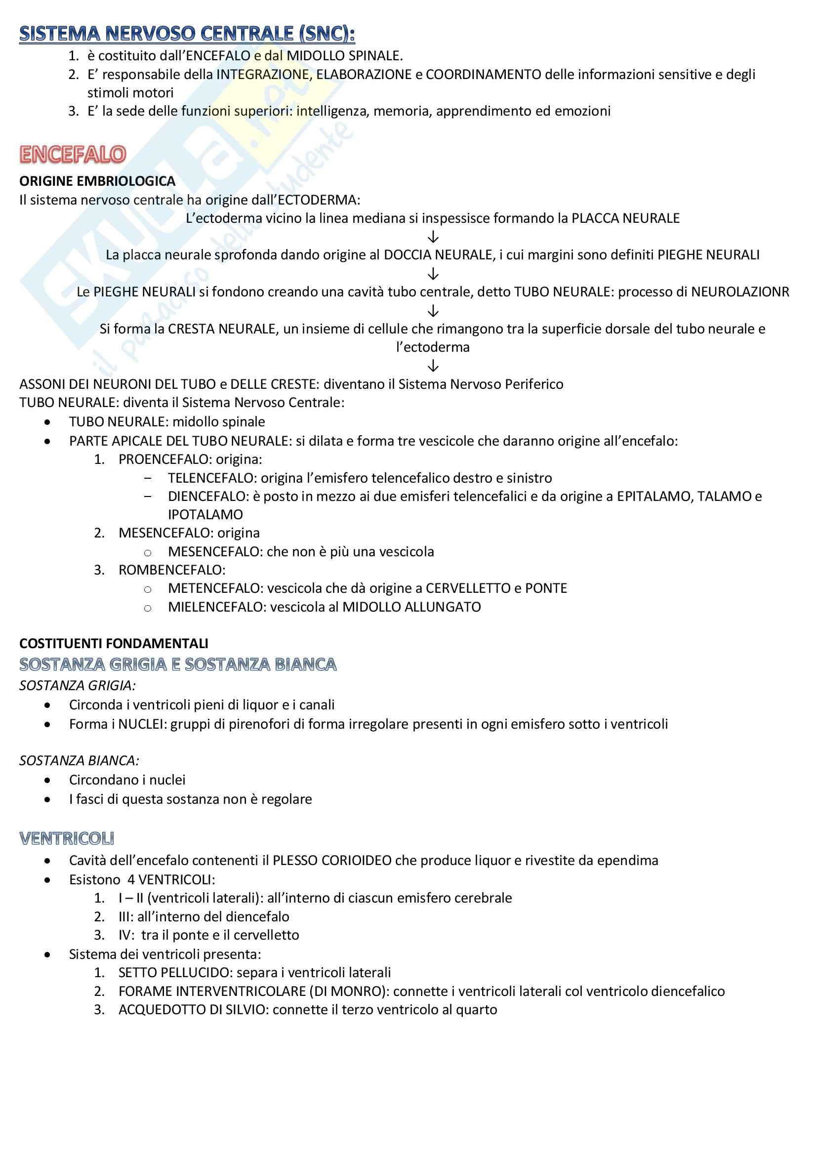 Scienze biomediche 1 - sistema nervoso centrale