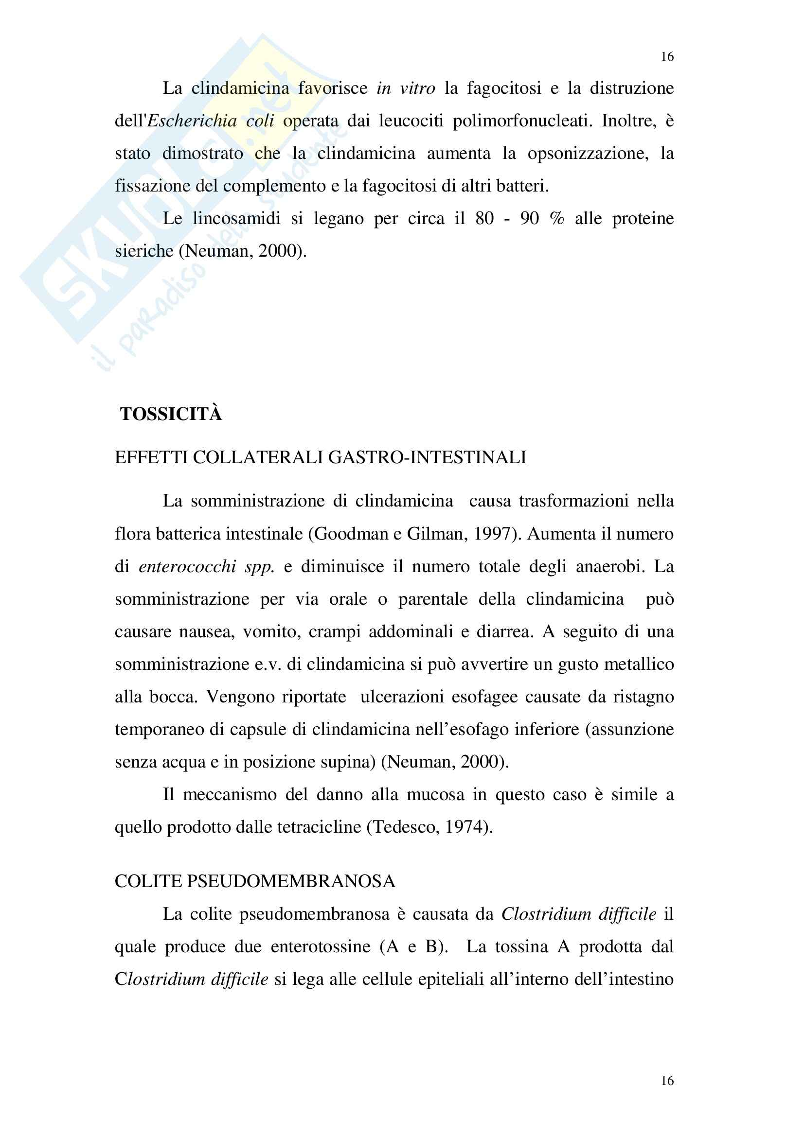 Chimica farmaceutica - lincosamidi Pag. 16