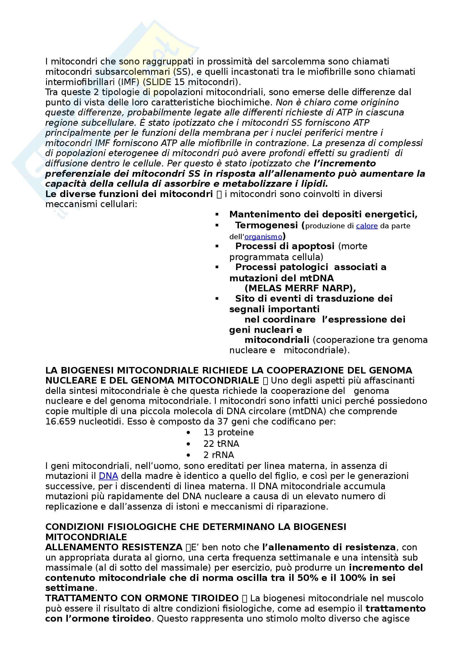 Riassunto esame Biologia umana, prof. Barbieri, libro consigliato La cellula, edizioni Zanichelli Pag. 26