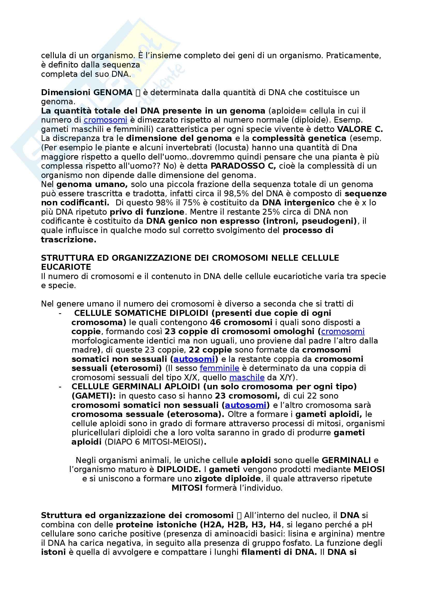 Riassunto esame Biologia umana, prof. Barbieri, libro consigliato La cellula, edizioni Zanichelli Pag. 36