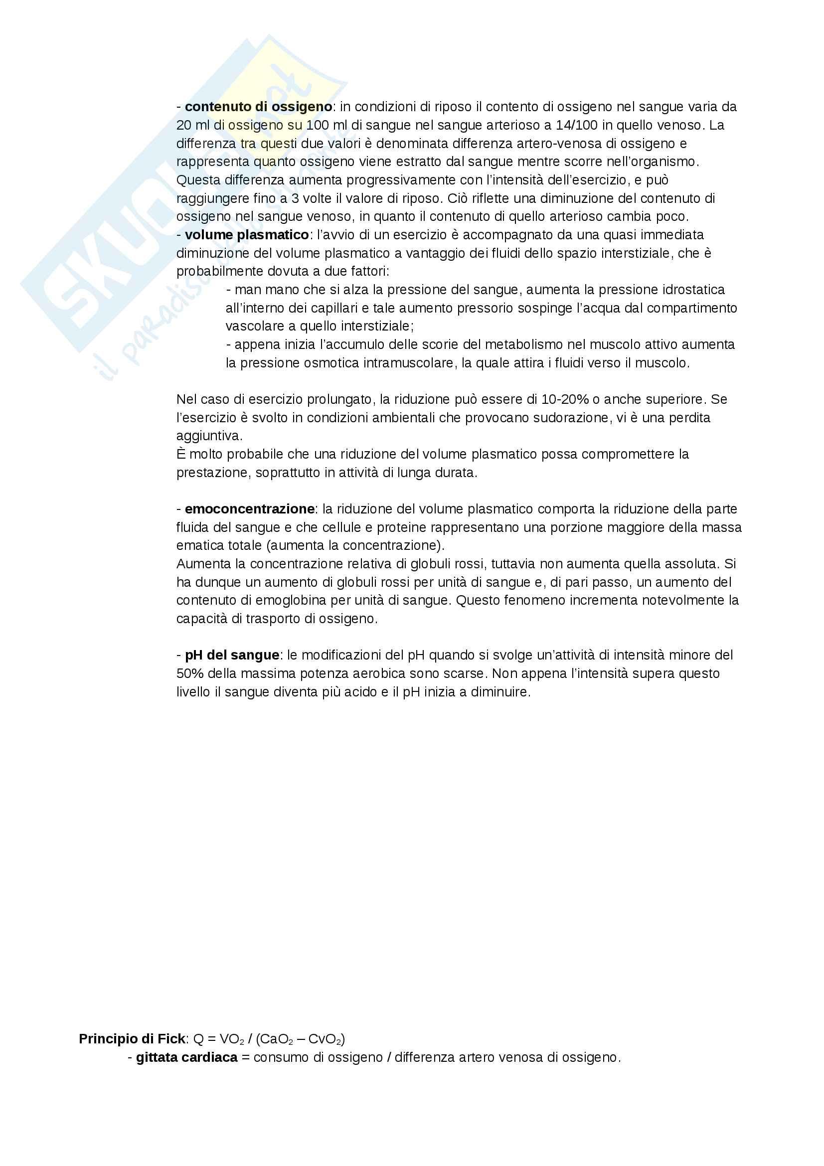 Appunti - Fisiologia sportiva Pag. 2