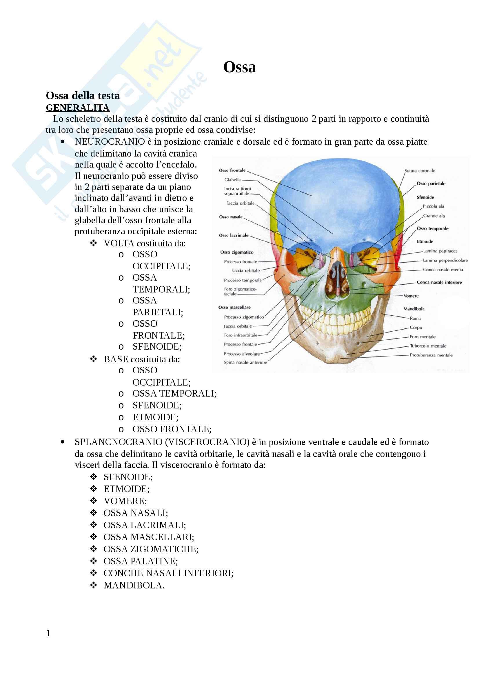 appunto P. Biologia Anatomia e fisiologia