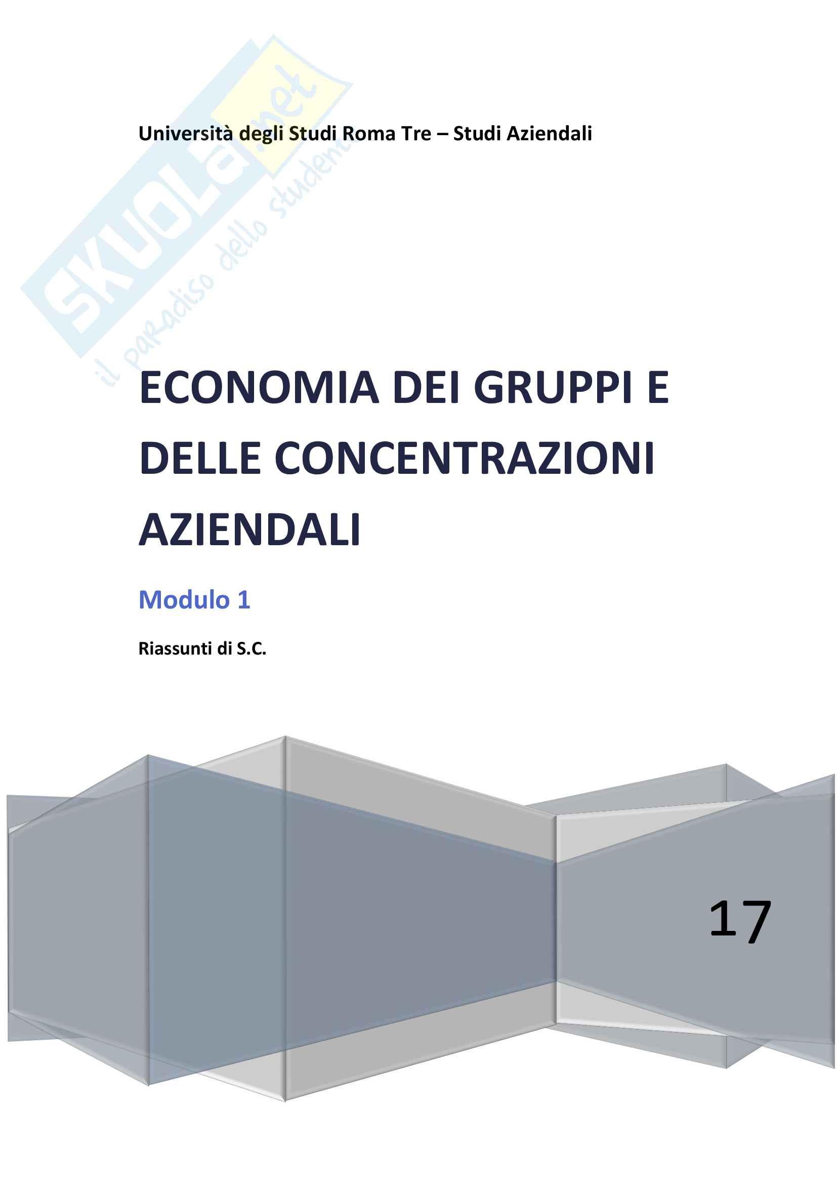 Riassunto esame Economia dei gruppi e delle Concentrazioni Aziendali, prof. Celli