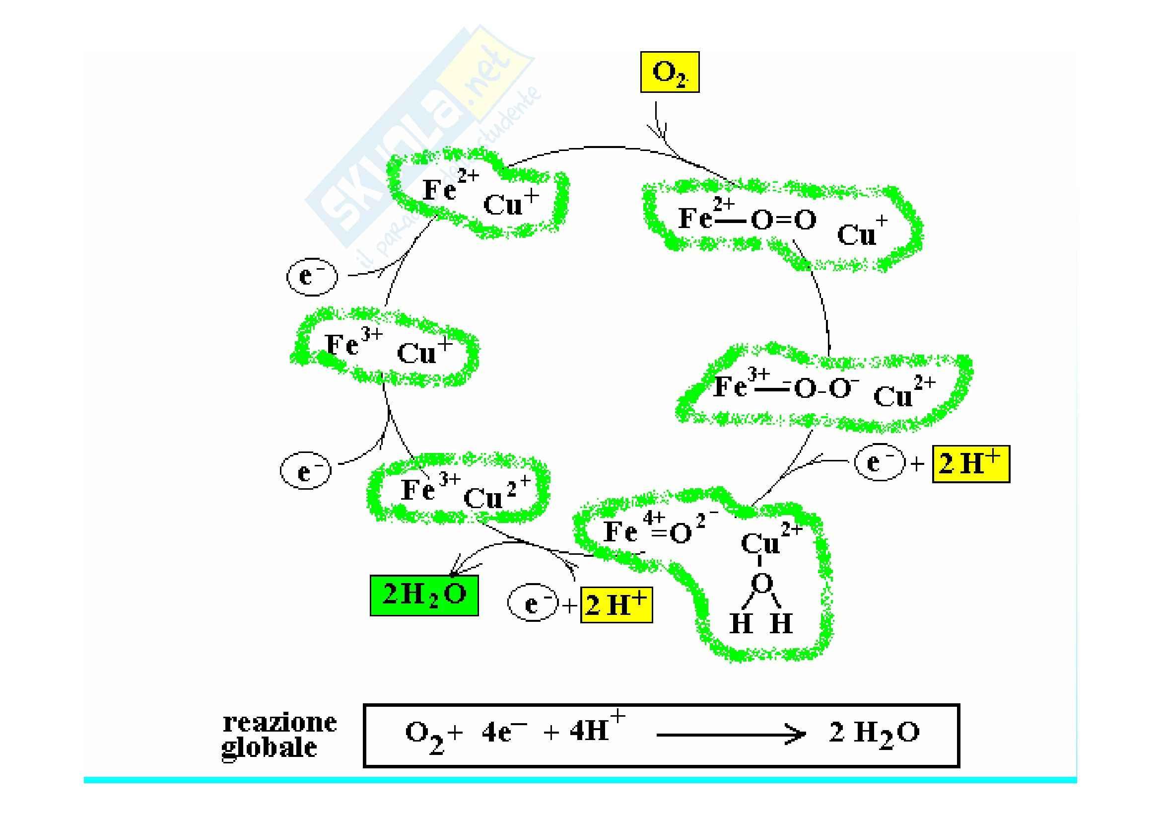 Biochimica II – Lezione 3 – Slides Pag. 41