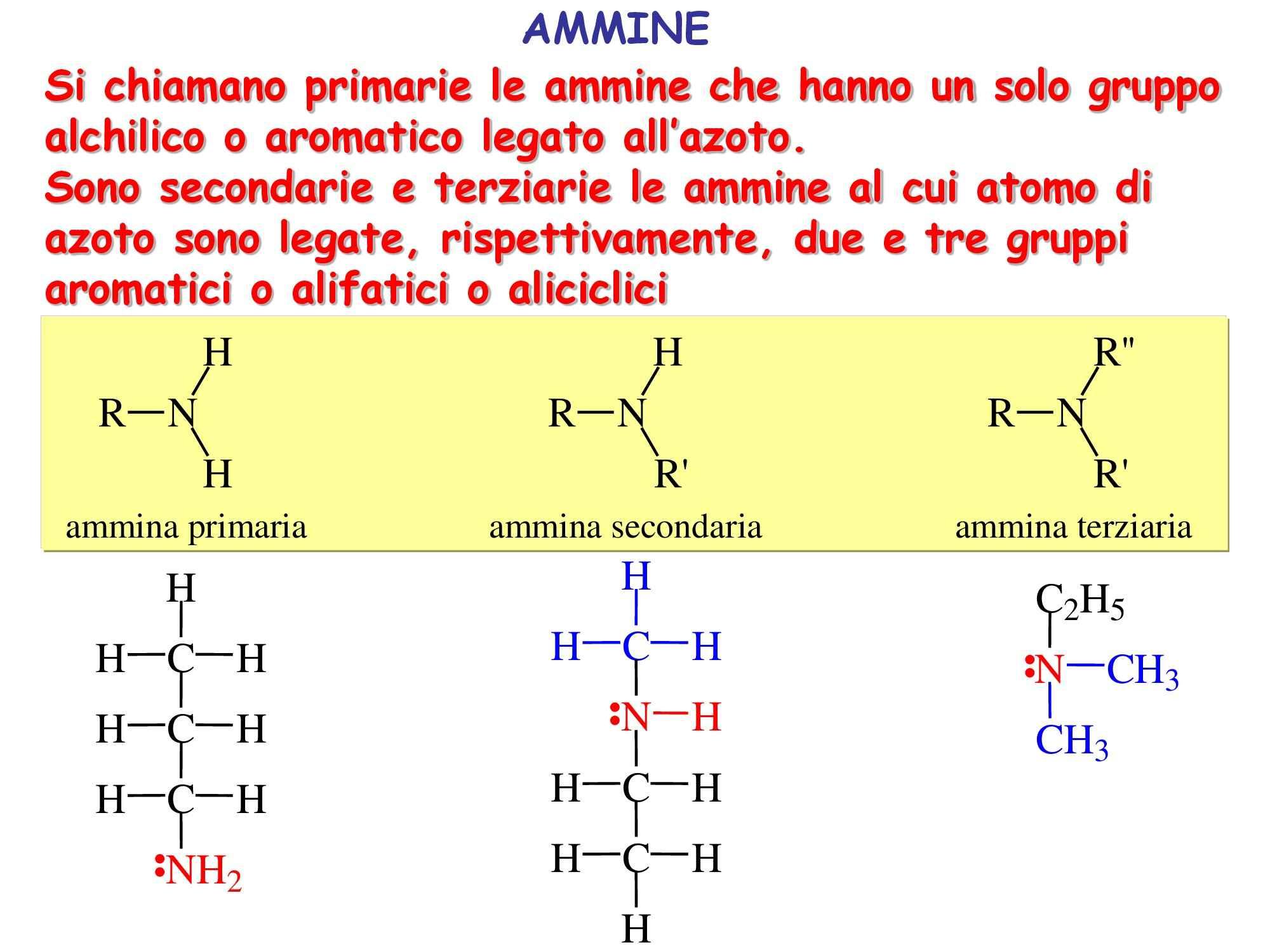 Chimica e propedeutica biochimica - ammine - Dispensa