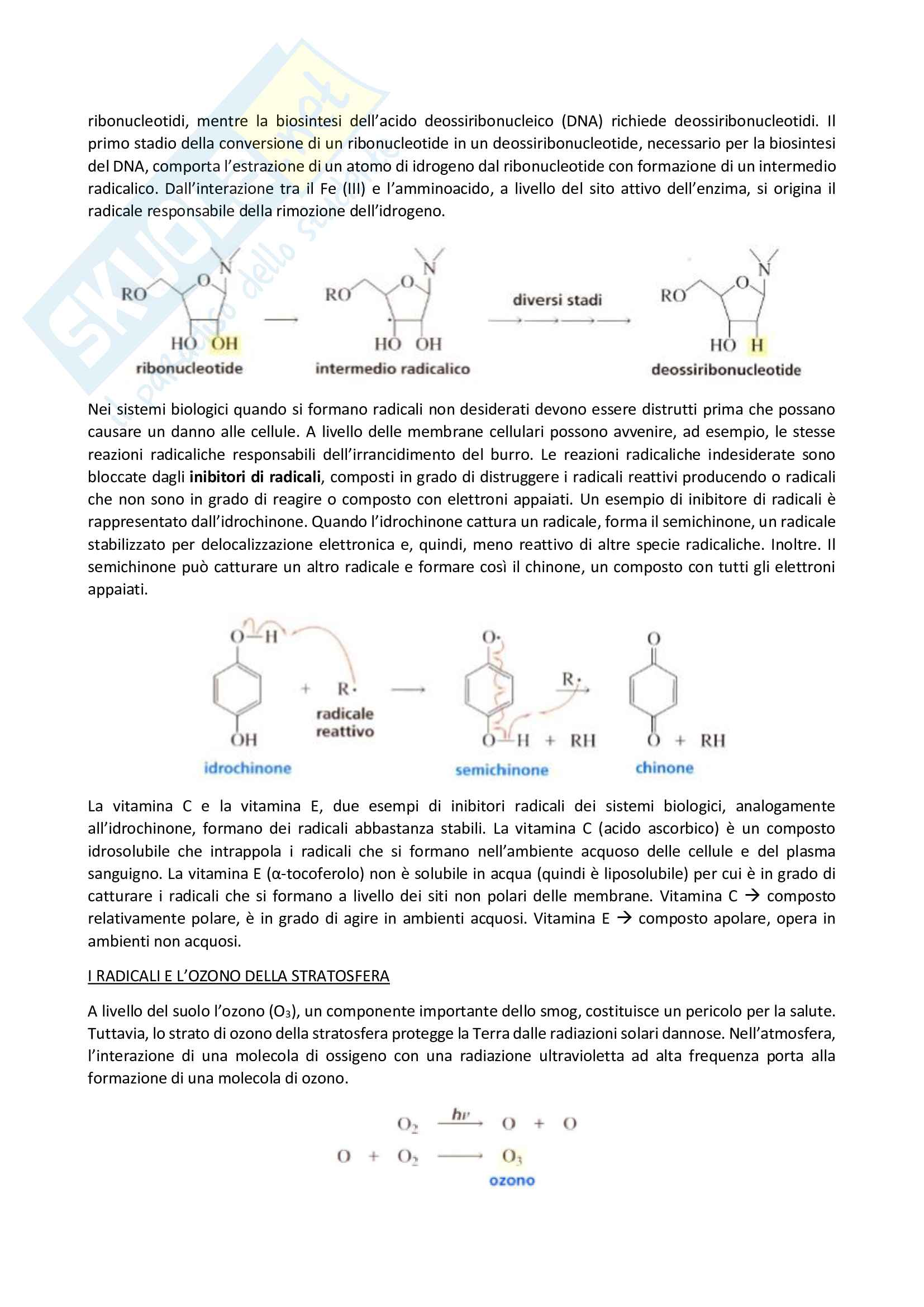 Chimica organica, Reazioni degli alcani - I radicali Pag. 11