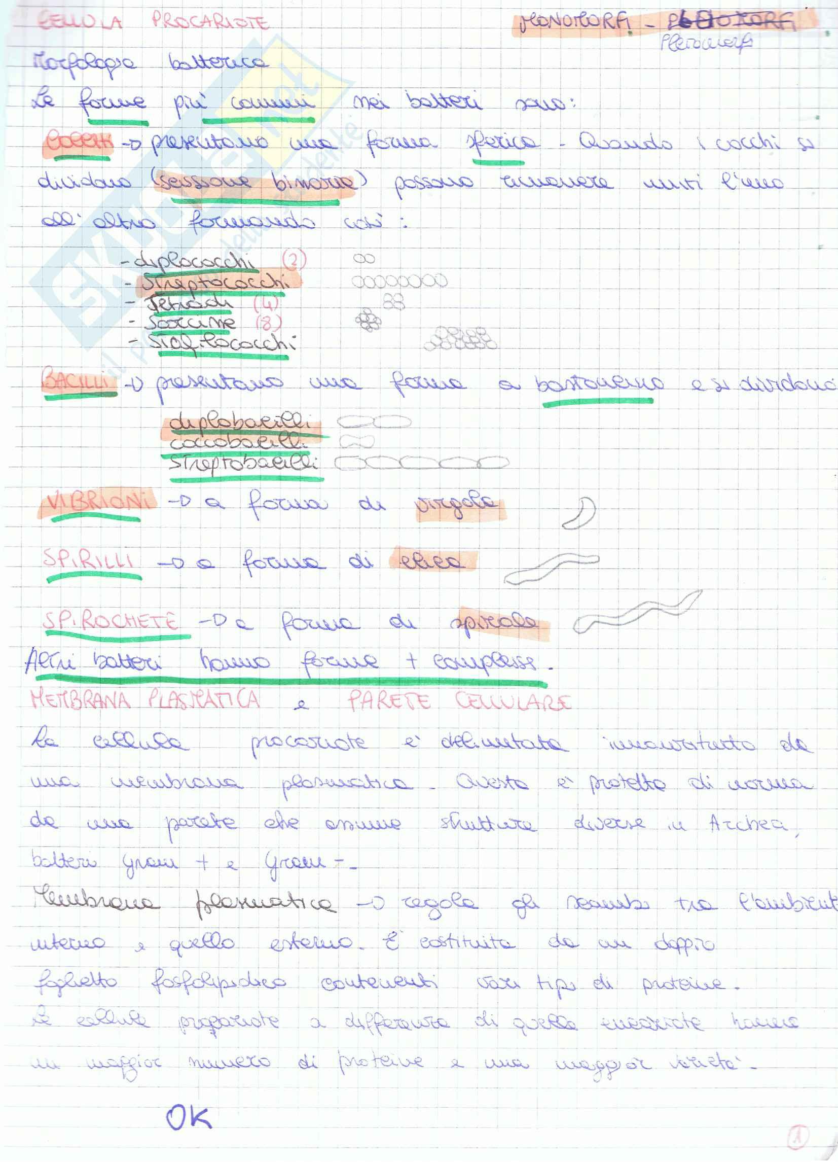 appunto M. Losso Microbiologia e igiene
