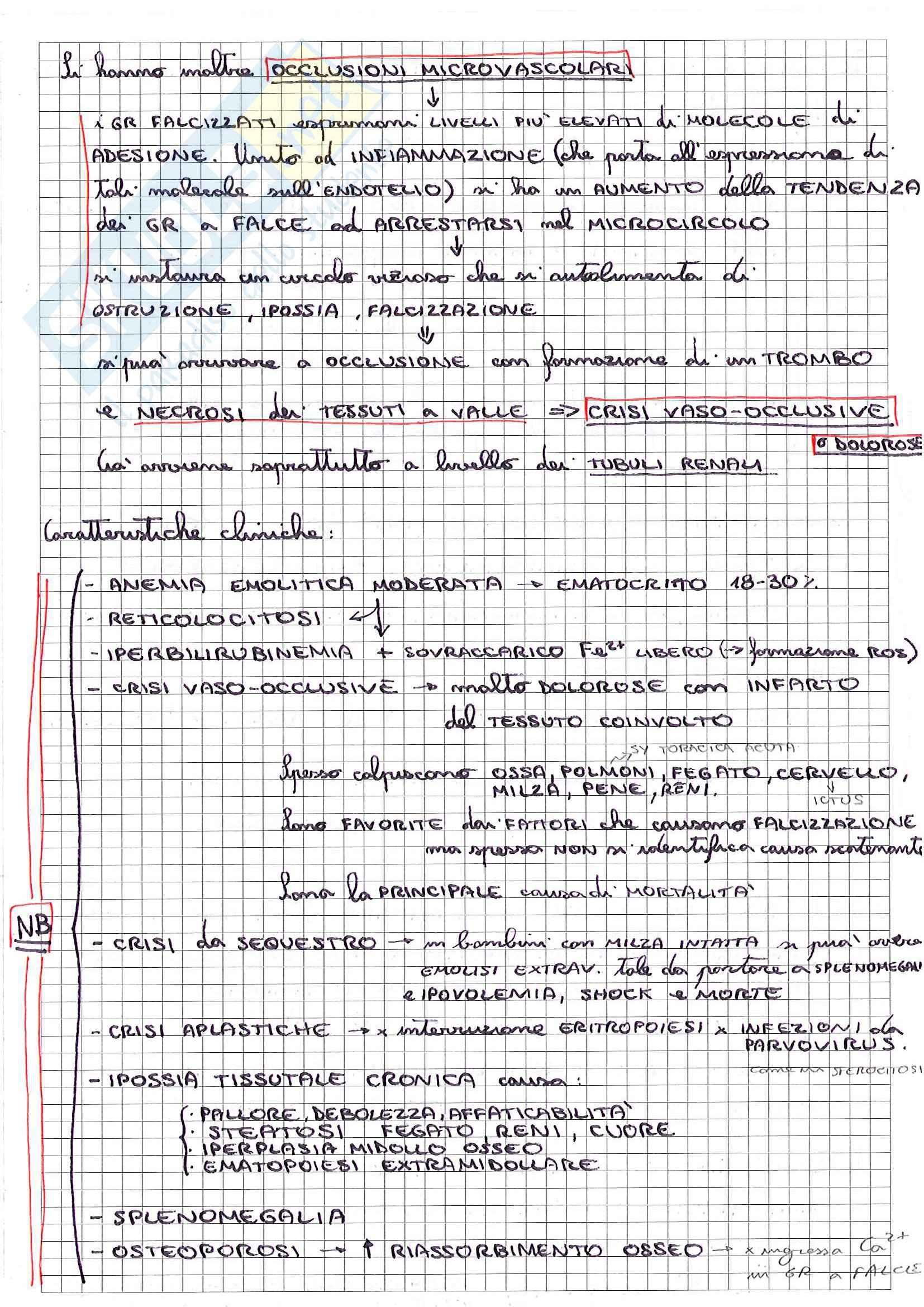 Riassunto esame Patologia, prof. Desiderio, libro consigliato Le basi patologiche delle malattie, Robbins , Cotran: parte 1 Pag. 16