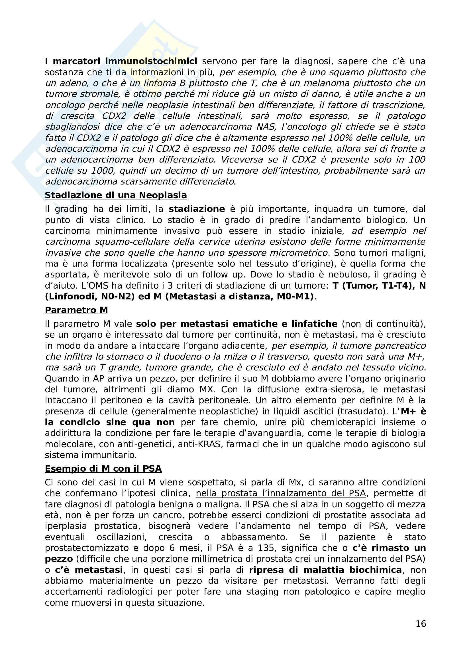 Appunti di Anatomia Patologica Pag. 16
