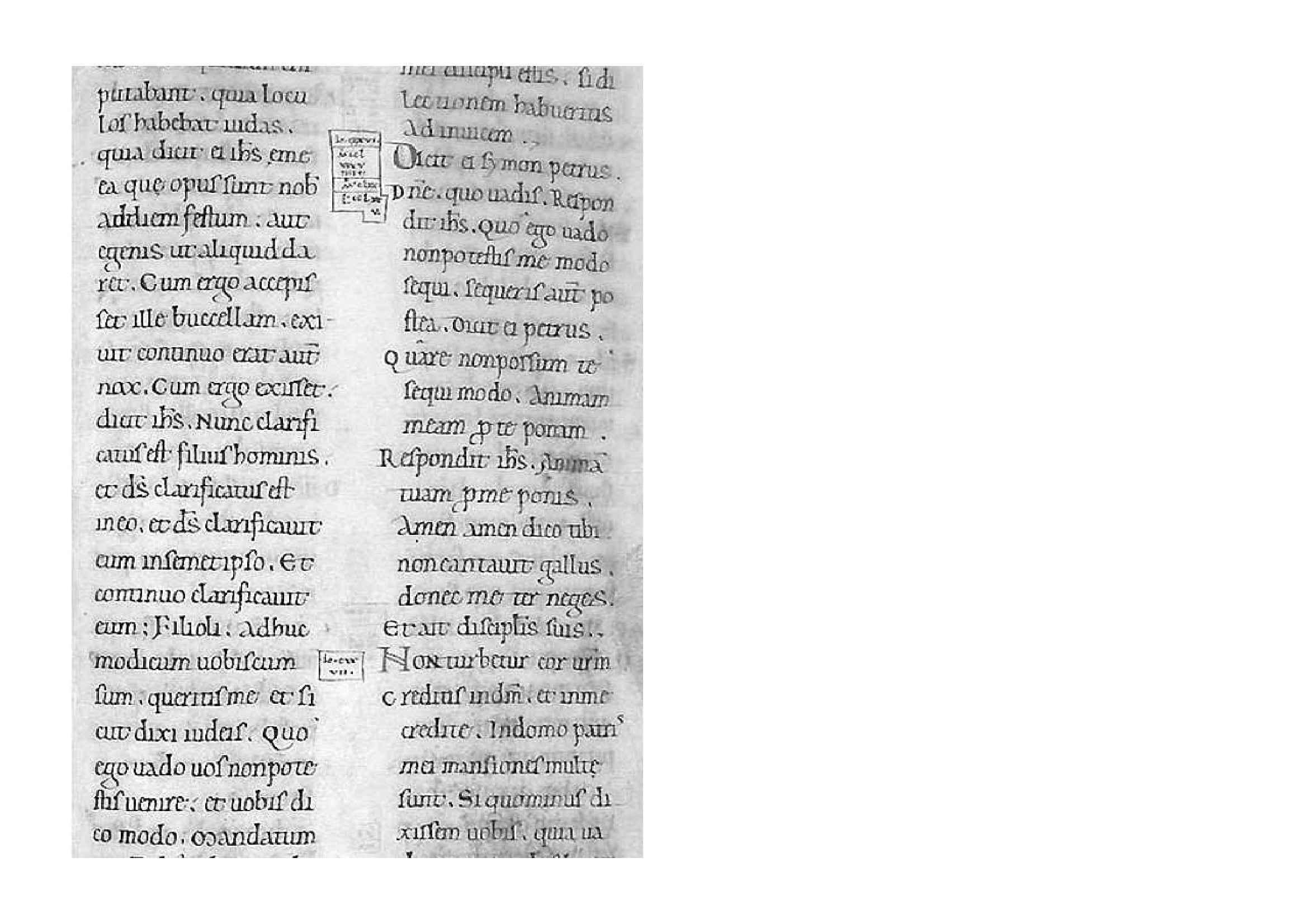 Cesena, Biblioteca Malatestiana, Piana 3.210, c. 144r