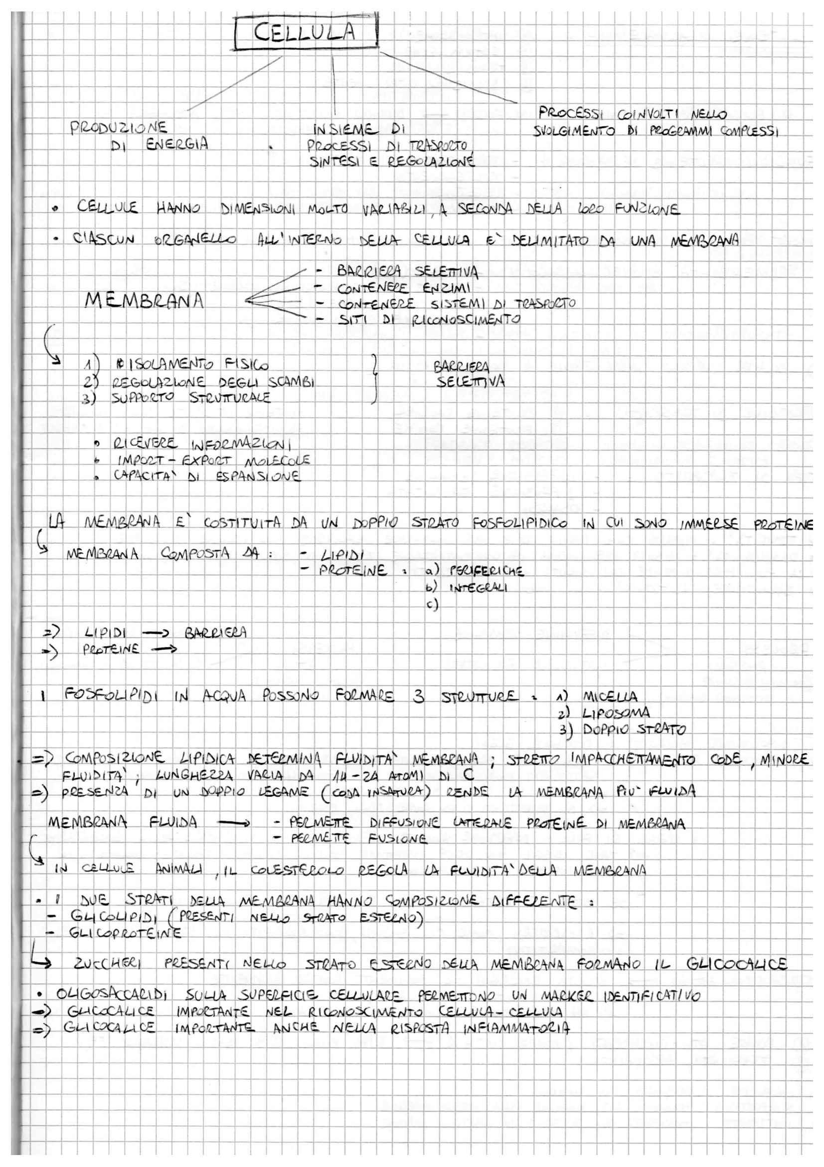 Fisiologia Generale - Appunti