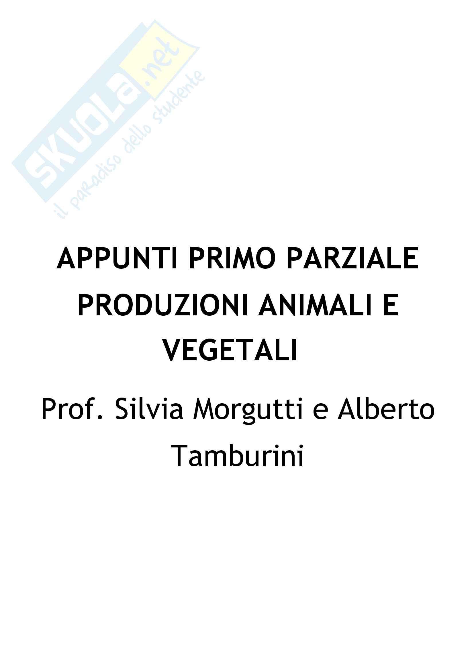 Appunti Primo parziale: Produzioni animali e vegetali