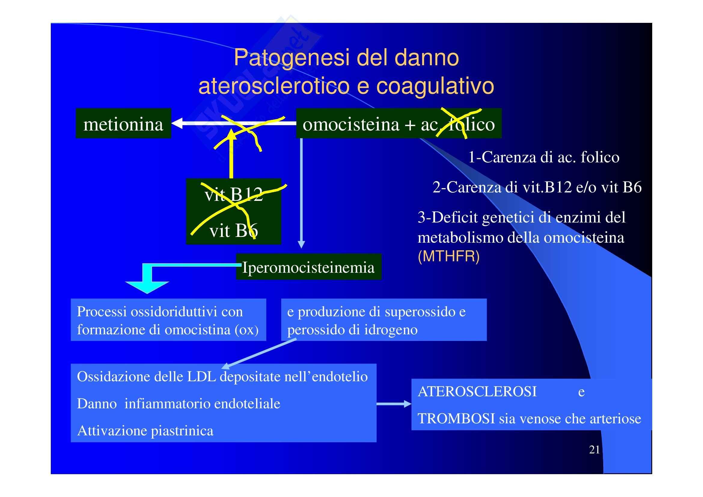 Patologia clinica - aterosclerosi Pag. 21