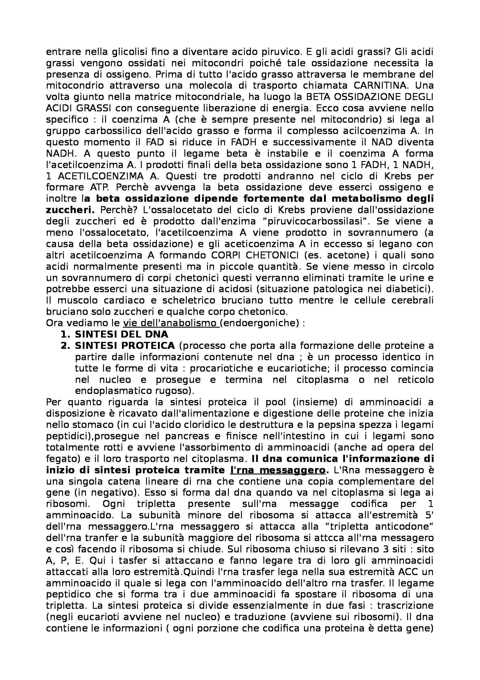 Biochimica - Appunti Pag. 16